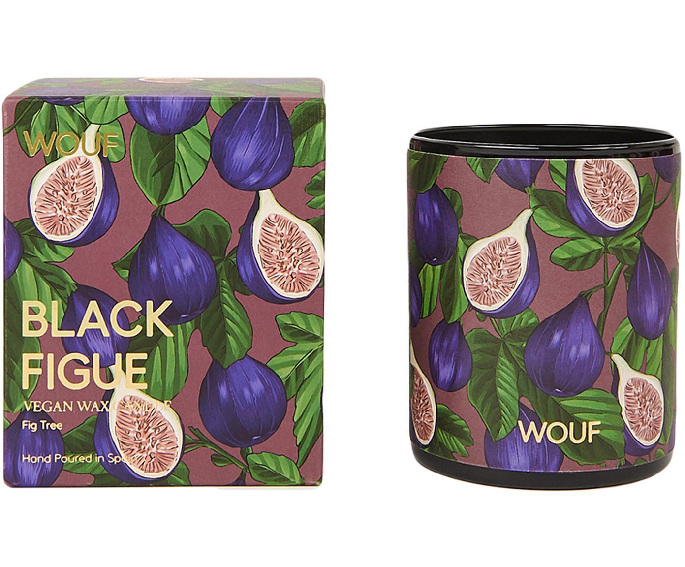 Duftkerze Black Figue (Feigenbaum), Vegetarisches Wachs, Glas, Lila, Mehrfarbig, Ø 8 x H 10 cm