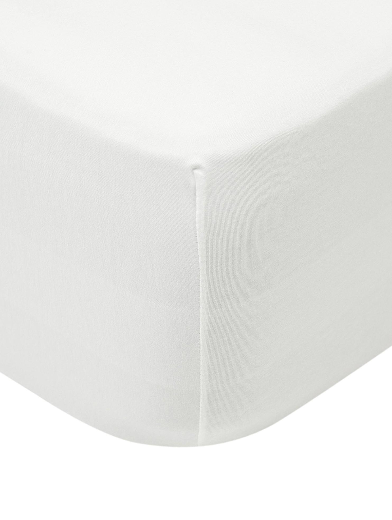 Prześcieradło na łóżko kontynentalne z gumką z jerseyu Lara, 95% bawełna, 5% elastan, Odcienie kremowego, S 90-100 x D 200 cm