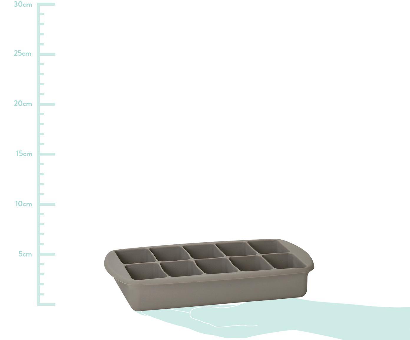 Eiswürfelform Glins, Deckel: Kunststoff, Grau, 21 x 4 cm