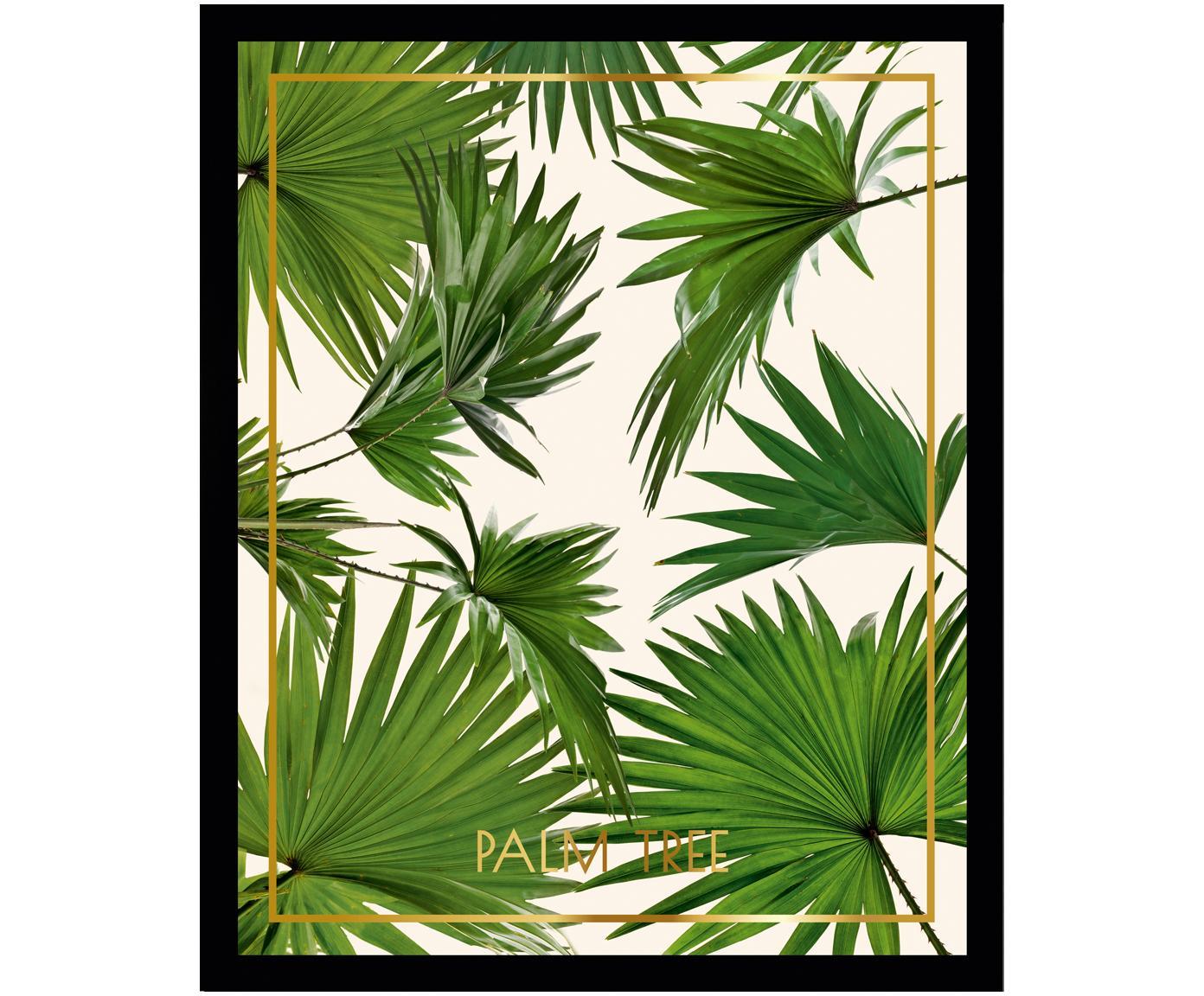 Gerahmter Digitaldruck Palm Tree I, Bild: Digitaldruck, Rahmen: Kunststoffrahmen mit Glas, Mehrfarbig, 30 x 40 cm