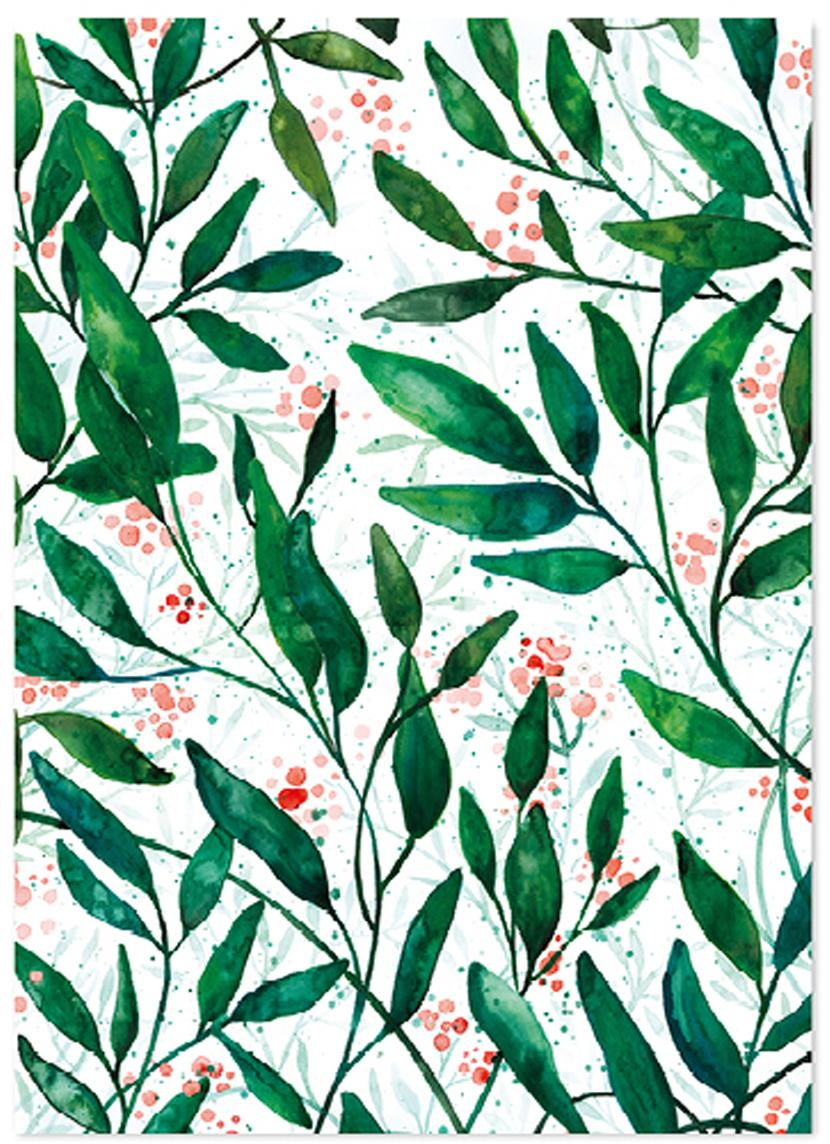 Cadeaupapier Green Leaves, 3 rollen, Papier, Groen, rood, wit, 50 x 70 cm