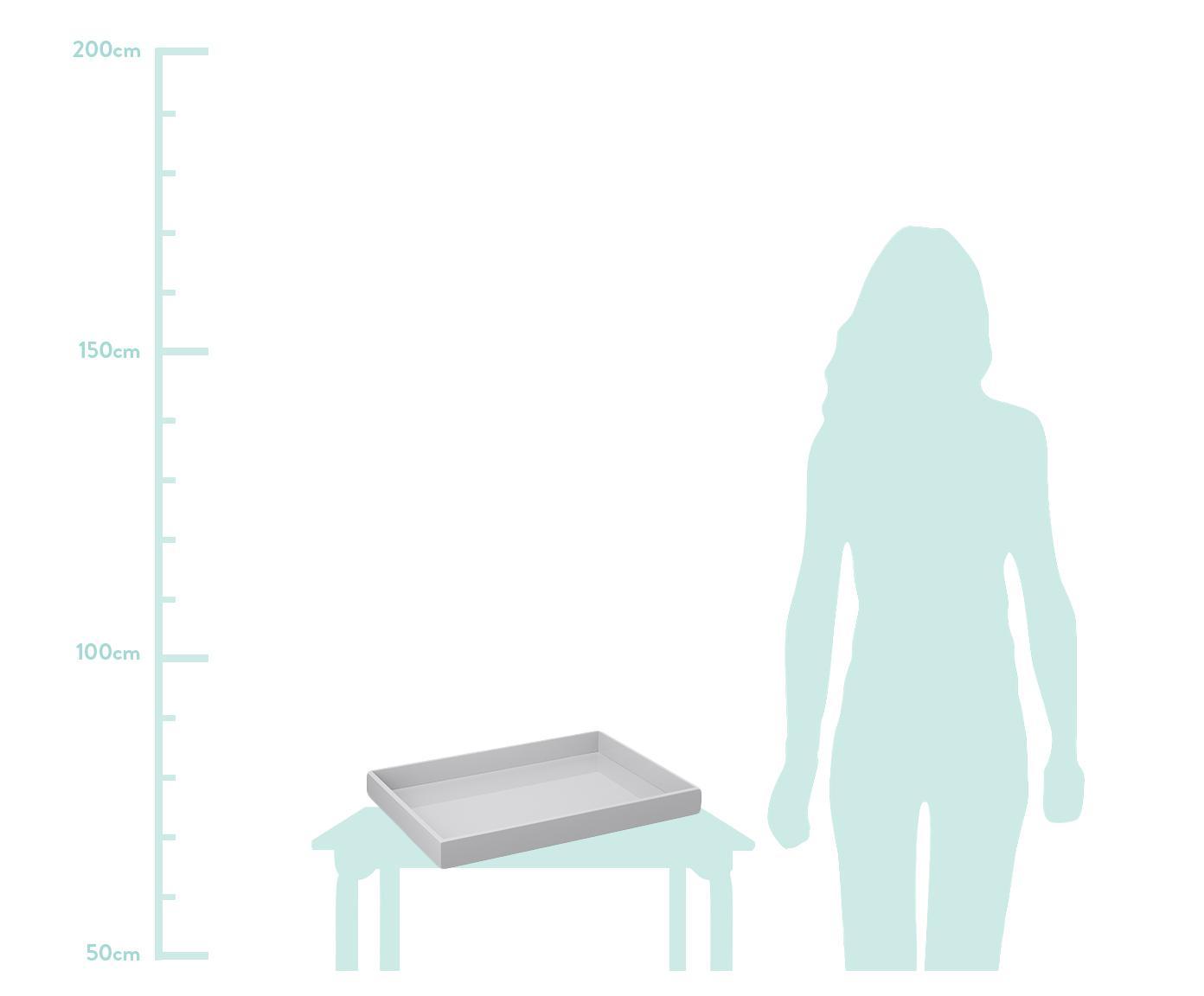 Hochglanz-Tablett Hayley in Grau, Tablett: Mitteldichte Holzfaserpla, Unterseite: Samt, Hellgrau, Unterseite: Hellgrau, B 50 x T 35 cm