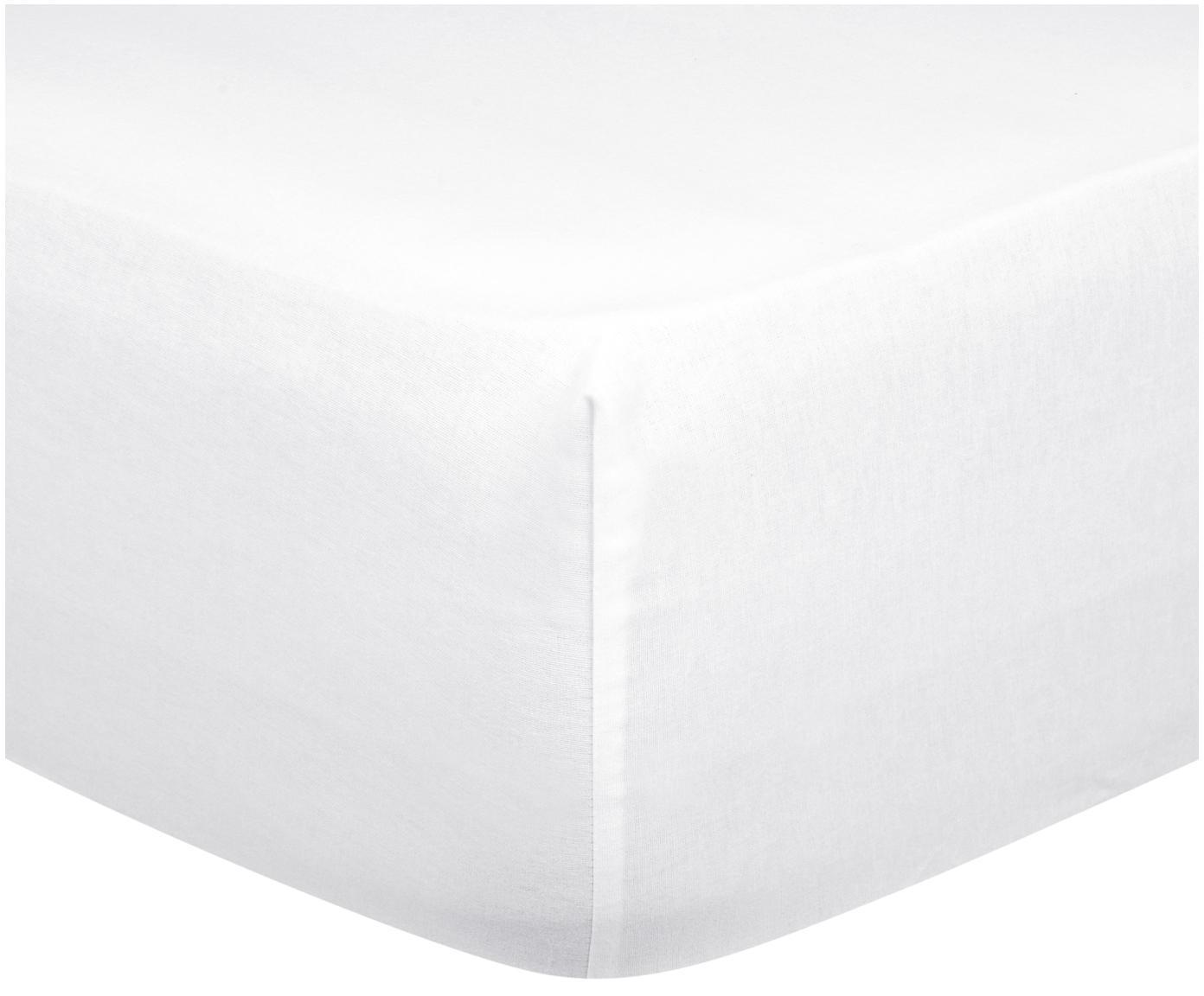 Flanellen hoeslaken Biba, Weeftechniek: flanel, Wit, 90 x 200 cm