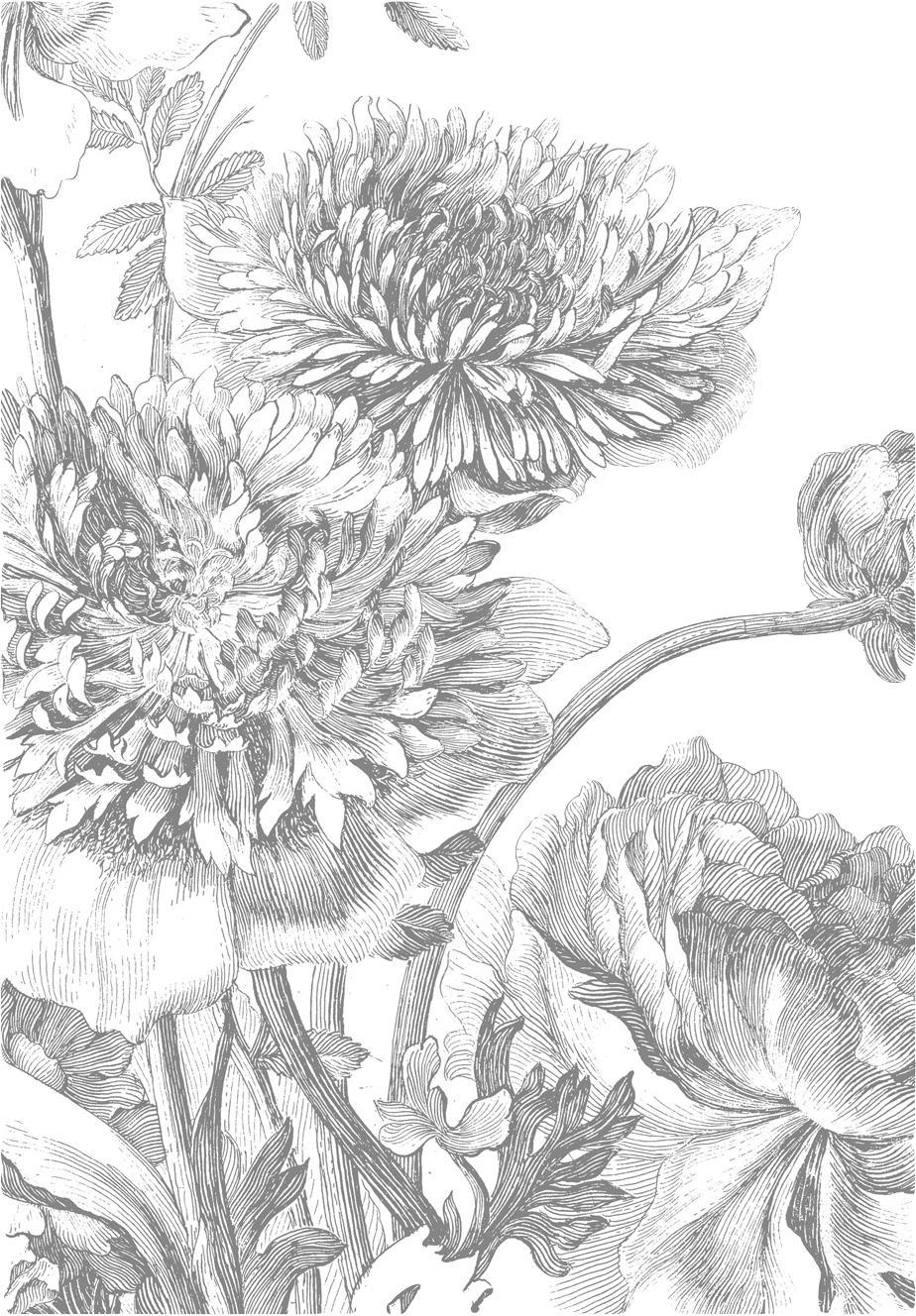 Fotomural Engraved Flowers, Tejido no tejido, ecológica y biodegradable, Gris, blanco, An 195 x Al 280 cm