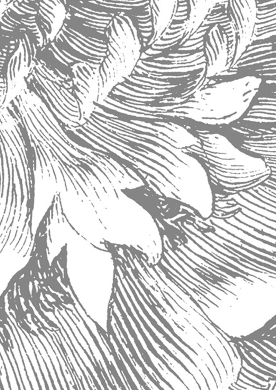 Carta da parati Engraved Flowers, Vello, ecologico e biodegradabile, Grigio, bianco, Larg. 292 x Alt. 280 cm