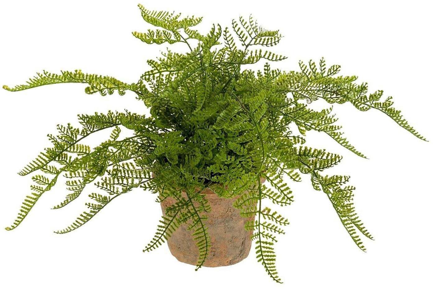 Planta artificial Helecho, Poliéster, Látex, Polipropileno, Alambre de metal, Verde, Ø 30 x Al 30 cm