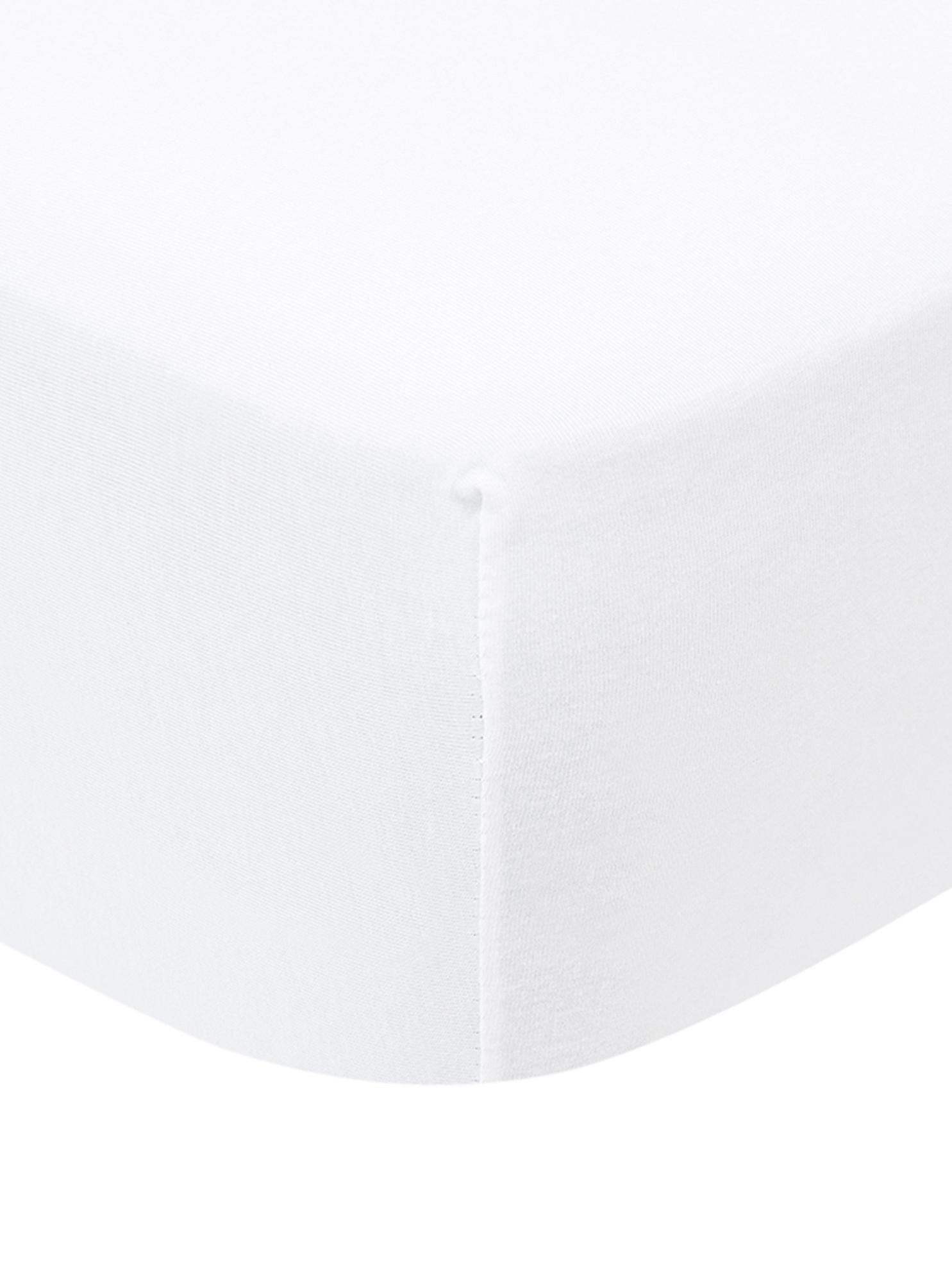Sábana bajera para cubrecolchón de jersey con elastano Lara, 95%algodón, 5%elastano, Blanco, Cama 90 cm (90-100 x 200 cm)