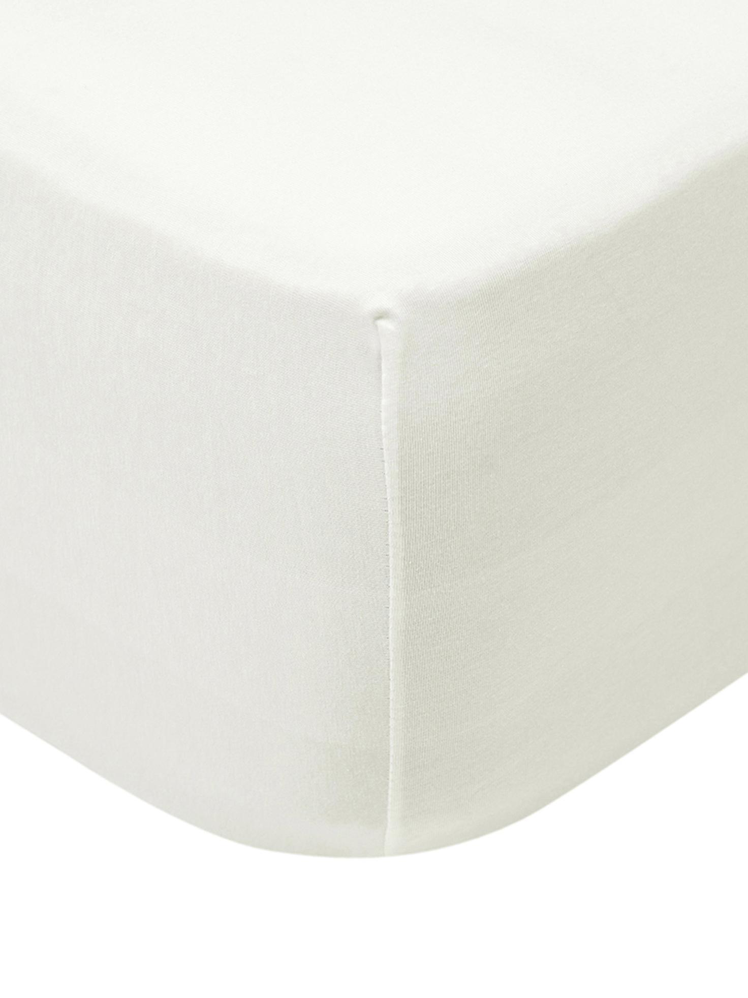 Lenzuolo con angoli in jersey-elastan Lara, 95% cotone, 5% spandex, Color crema, Larg. 90-100 x Lung. 200 cm