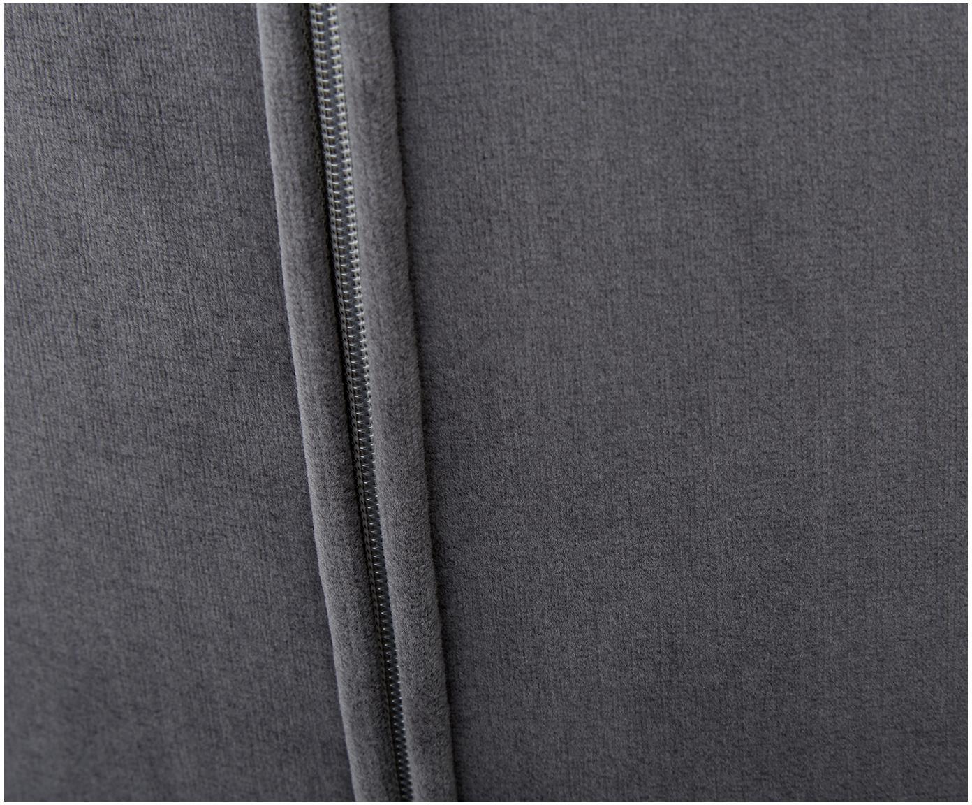 Samt-Polsterstuhl Tess, Bezug: Samt (Polyester) Der hoch, Beine: Metall, beschichtet, Samt Anthrazit, Beine Gold, B 48 x T 64 cm