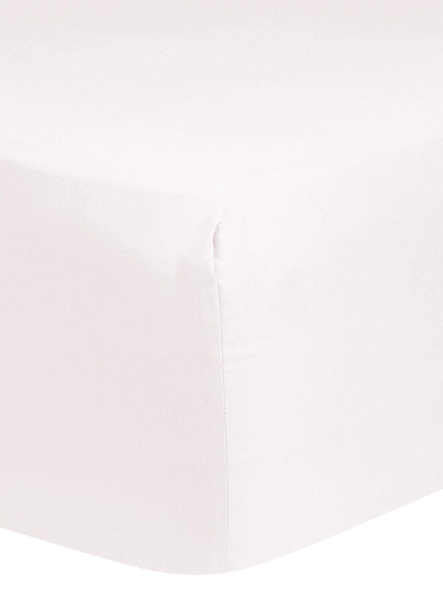 Lenzuolo con angoli in raso di cotone Comfort, Rosa, Larg. 180 x Lung. 200 cm