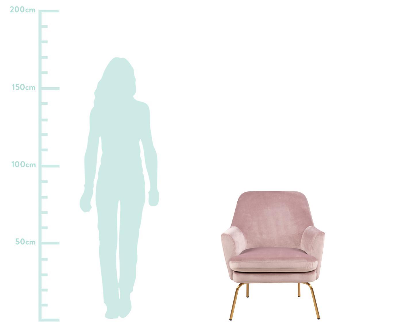 Samt-Loungesessel Chisa, Bezug: Polyestersamt 25.000 Sche, Beine: Metall, lackiert, Samt Rosa, B 68 x T 73 cm