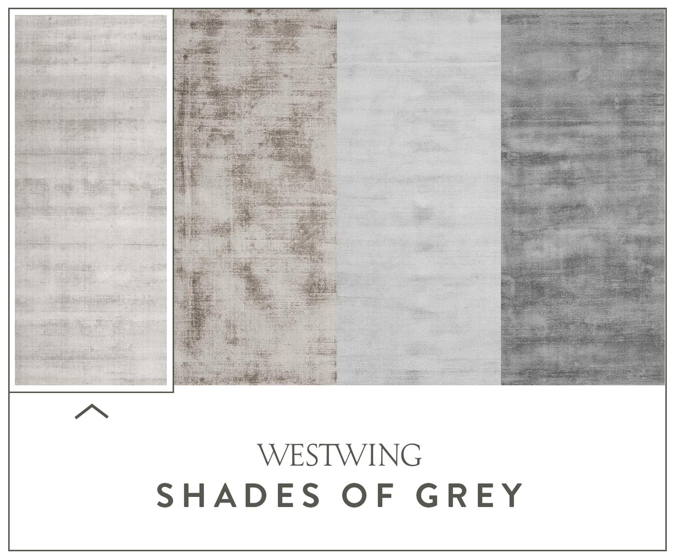 Ręcznie tkany dywan z wiskozy Jane, Jasny szarobeżowy, S 400 x D 500 cm (Rozmiar XXL)