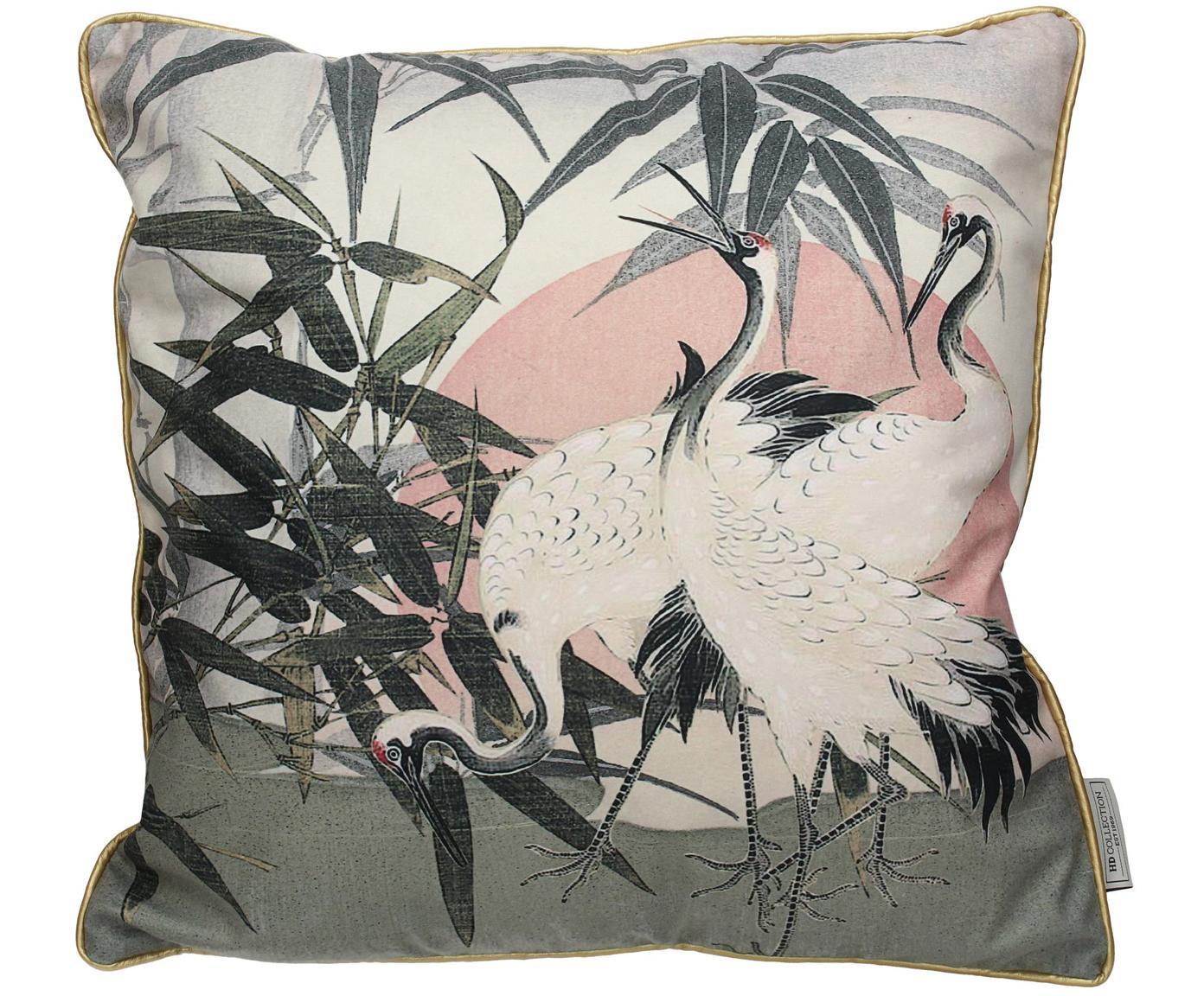 Fluwelen kussen Tripo met vogelmotief, met vulling, Polyester fluweel, Multicolour, 45 x 45 cm