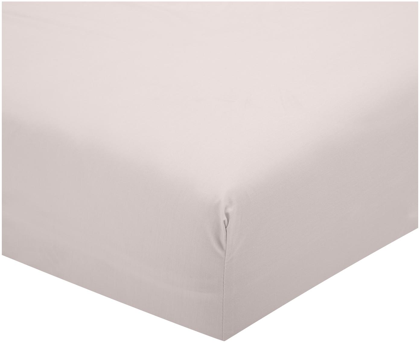 Lenzuolo con angoli in percalle Elsie, Tessuto: percalle, Rosa, 140 x 200 cm