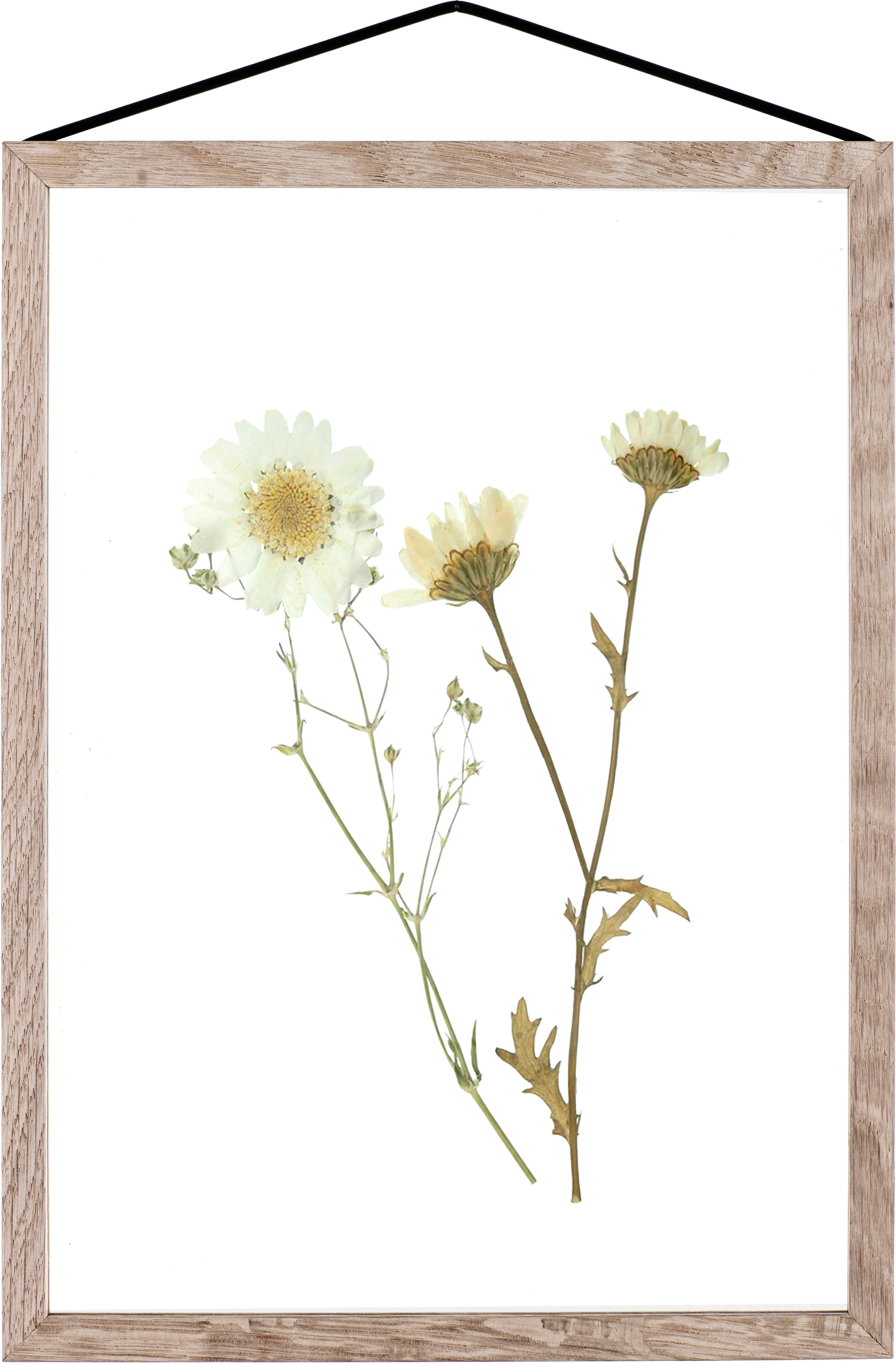 Ramka na zdjęcia Frame, Stelaż: drewno dębowe, Stelaż: drewno dębowe Zawieszka: czarny Front i tył: transparentny, S 23 x W 31 cm