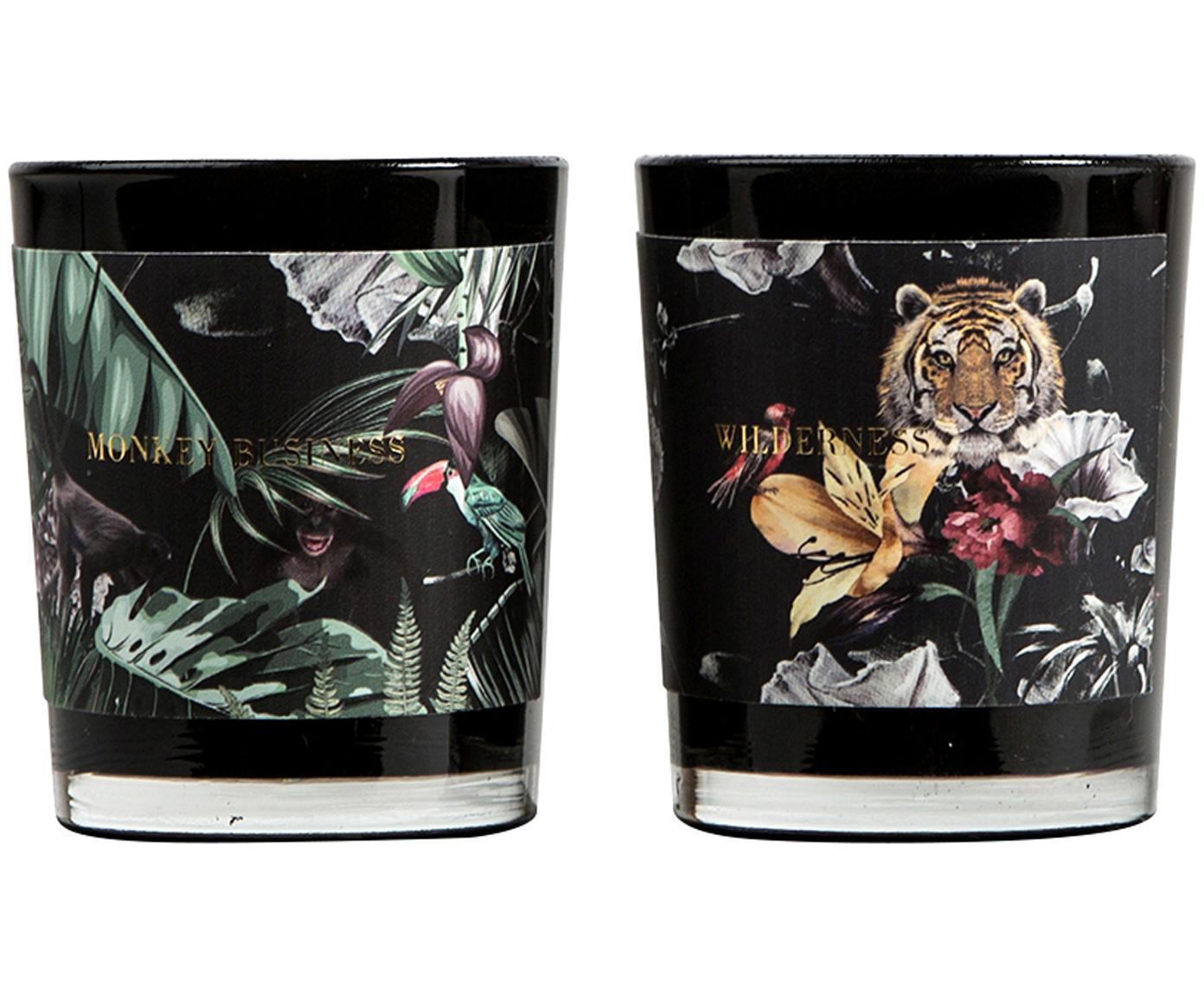 Komplet świec zapachowych Wilderness (ananas, marakuja, grejpfrut i mango), 2 elem., Czarny, odcienie zielonego, odcienie szarego, Ø 6 x W 7 cm