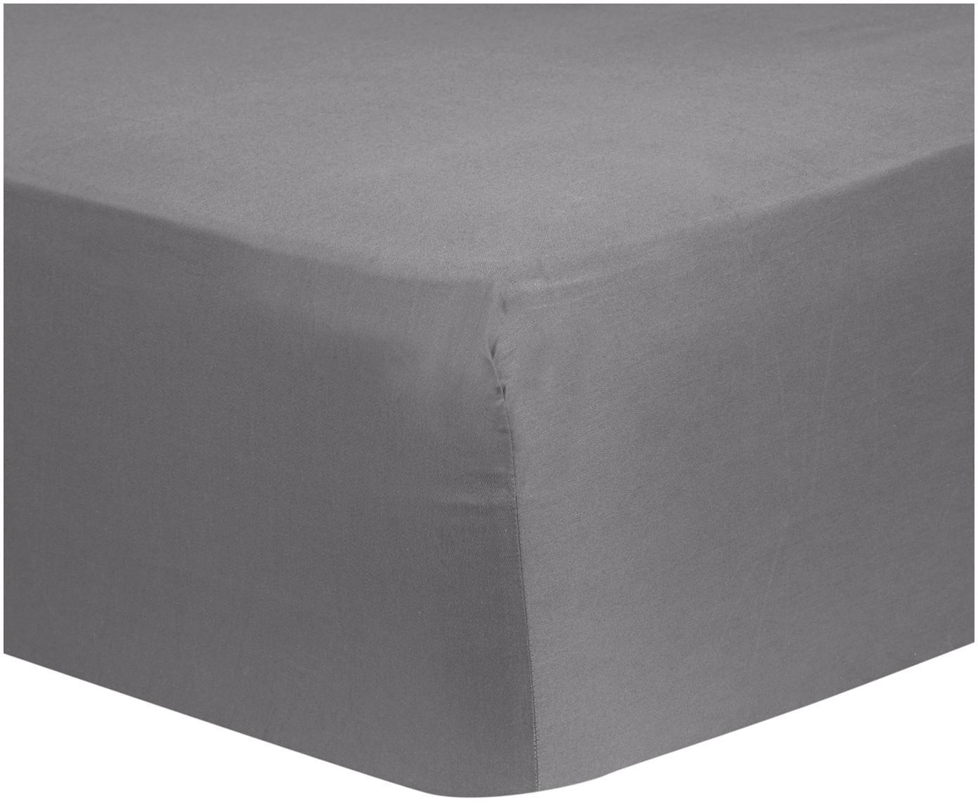Lenzuolo con angoli in raso di cotone Comfort, Grigio scuro, Larg. 180 x Lung. 200 cm