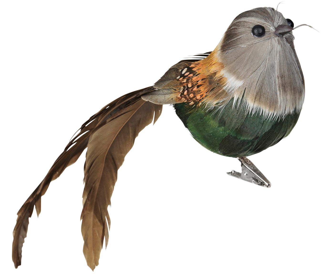 Figuras decorativas Tori, 2uds., Figura: plumas, espuma de poliest, Verde, marrón, gris, Ancho 21 x Alto 7 cm