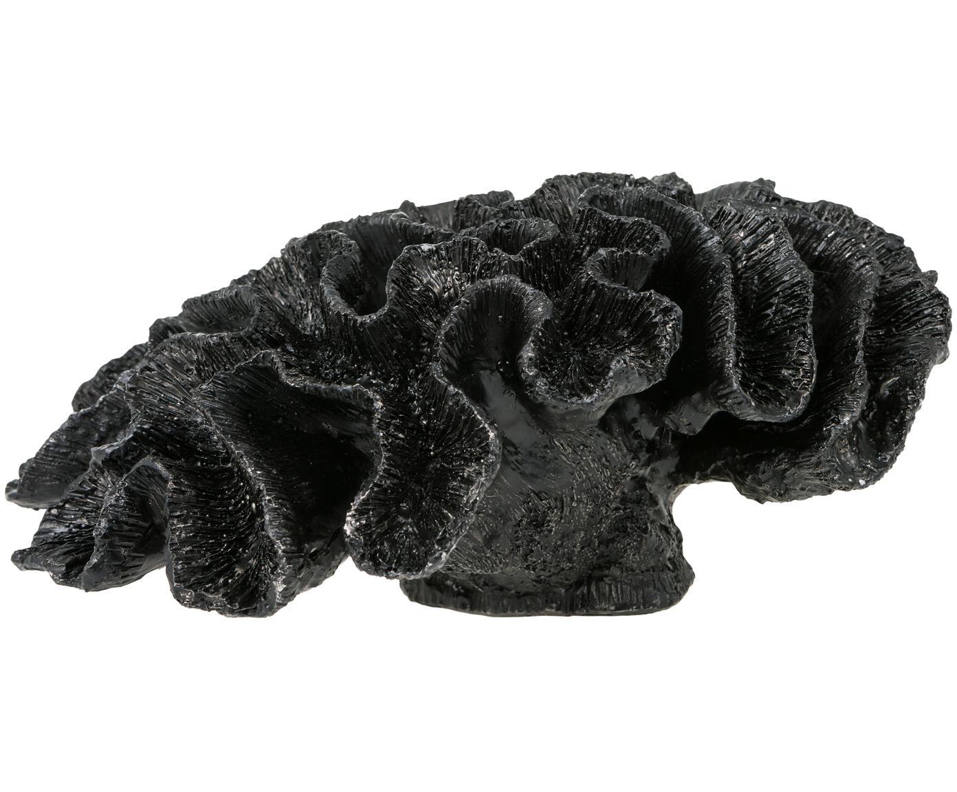 Decoratief object Marina, Polyresin, Zwart, 24 x 12 cm
