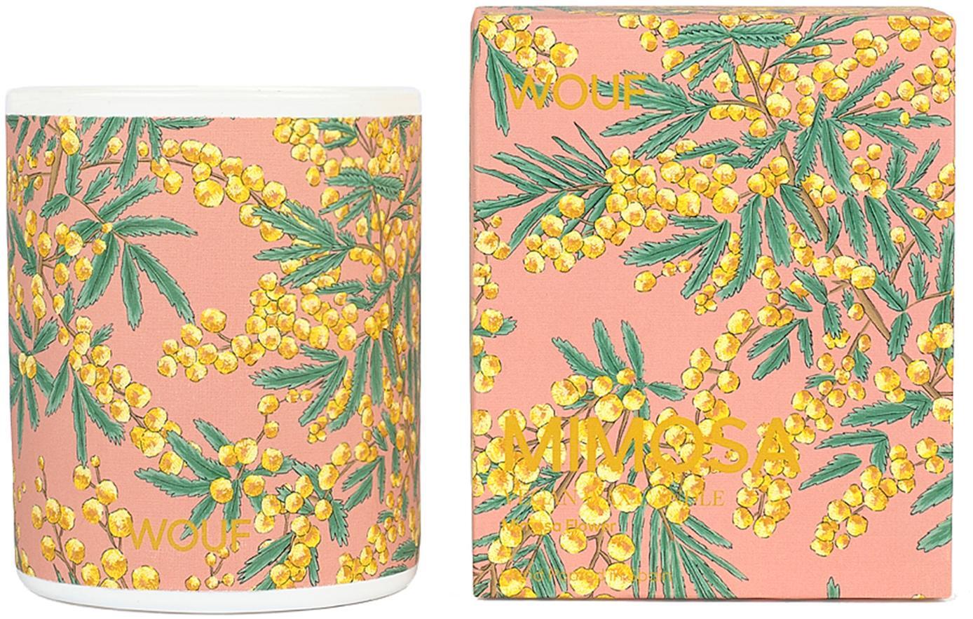 Candela profumata Mimosa (mimosa), 100% cera vegetale, Rosa, Ø 8 x Alt. 10 cm