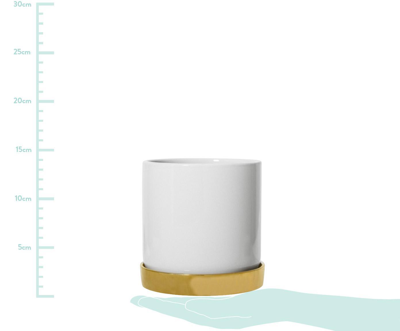 Übertopf Elin aus Steingut, Steingut, Topf: WeißUntersetzer: Gold, Ø 14 x H 14 cm