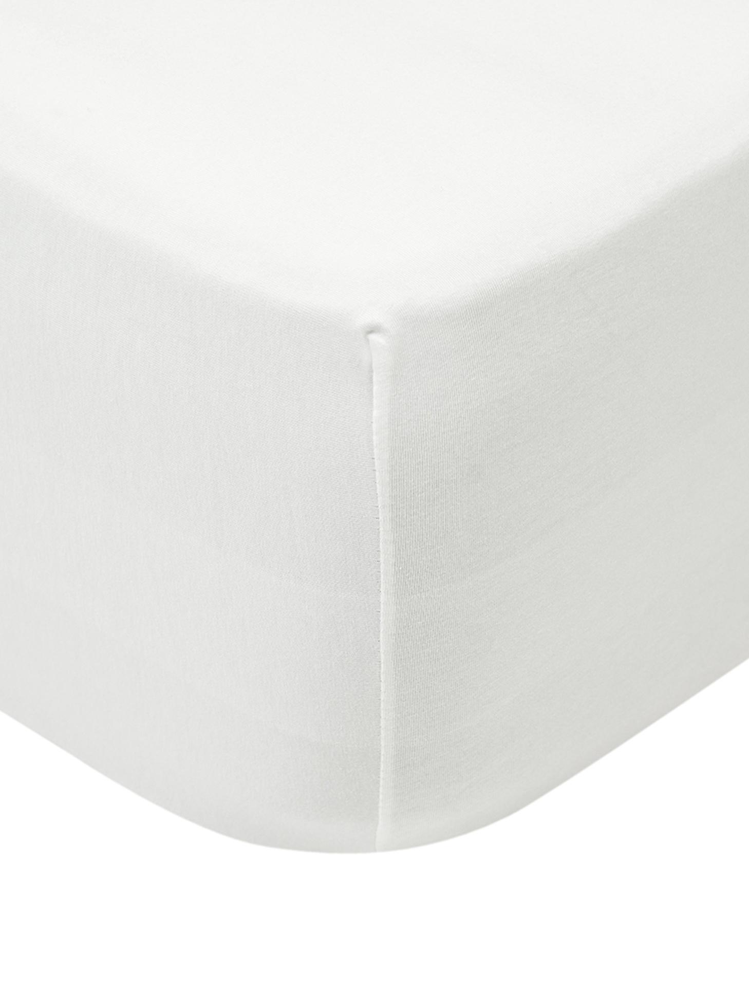 Boxspring-Spannbettlaken Lara, Jersey-Elasthan, 95% Baumwolle, 5% Elasthan, Cremefarben, 180 x 200 cm