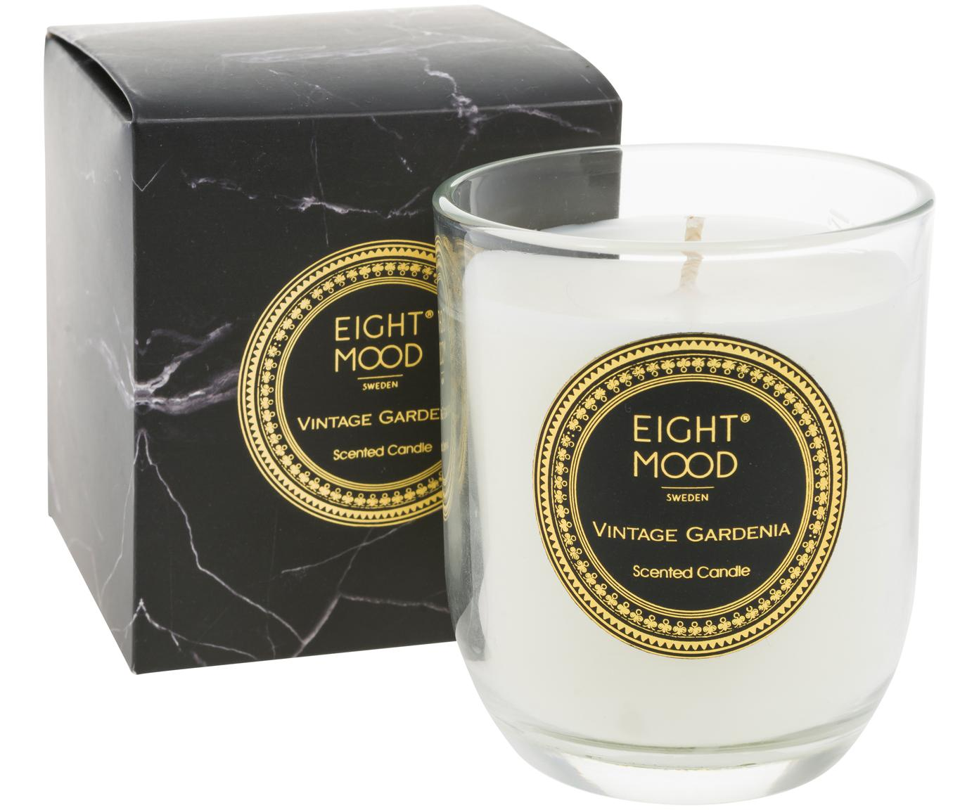 Świeca zapachowa Black Marble (gardenia), Pojemnik: transparentny Wosk: biały, Ø 8 x W 9 cm
