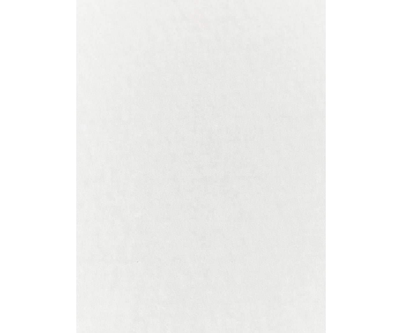 Vlies-Teppichunterlage My Slip Stop aus Polyestervlies, Polyestervlies mit Anti-Rutsch-Beschichtung, Hellgrau, 70 x 140 cm