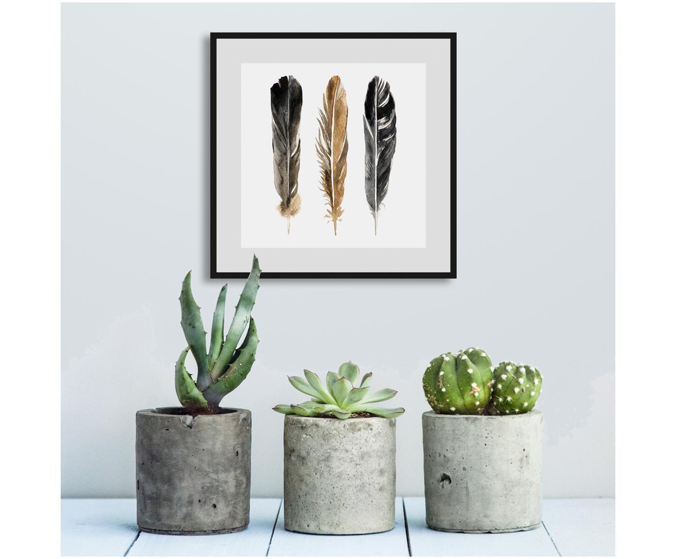 Gerahmter Digitaldruck Three Feathers, Bild: Digitaldruck, Rahmen: Metall, Front: Plexiglas, Weiß, Schwarz, Braun, 30 x 30 cm