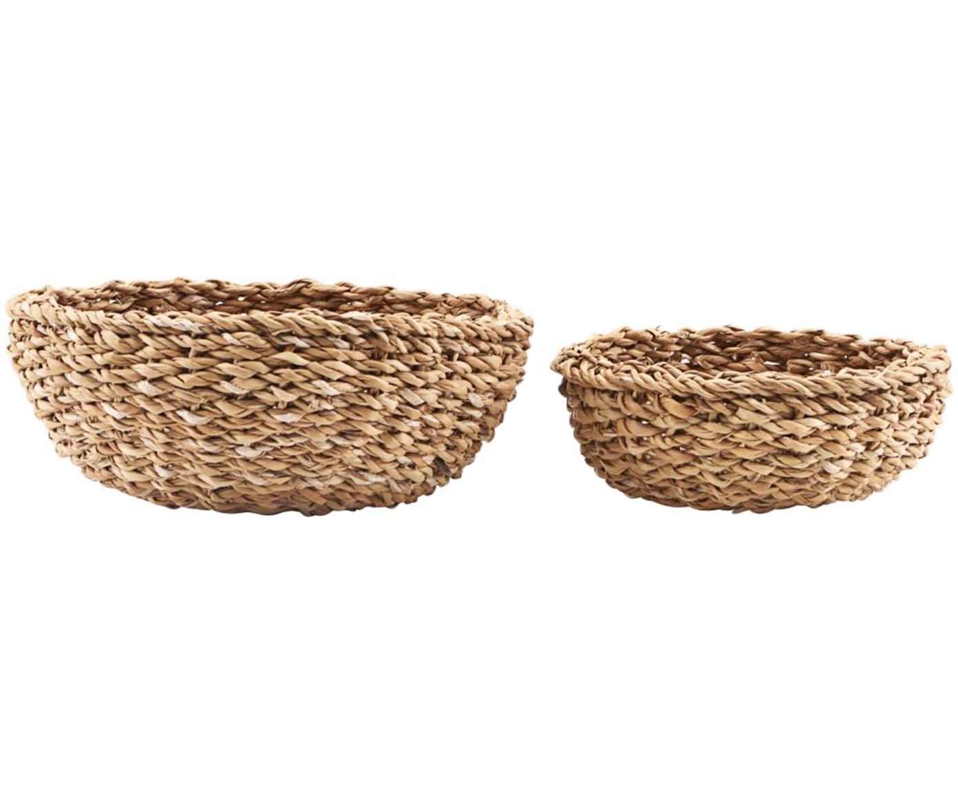 Set 2 cestini per pane in fibra naturale Tango, Alghe, Alghe, Diverse dimensioni