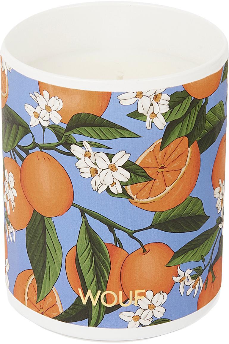 Wegańska świeca zapachowa Orange Blossom (kwiat pomarańczy), Pomarańczowy, Ø 8 x W 10 cm