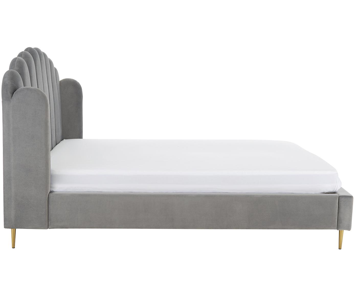 Gestoffeerd fluwelen bed Glamour, Frame: massief grenenhout, Poten: vermessingd metaal, Bekleding: fluweel (polyester), Bekleding: grijs. Poten: glanzend goudkleurig, 160 x 200 cm