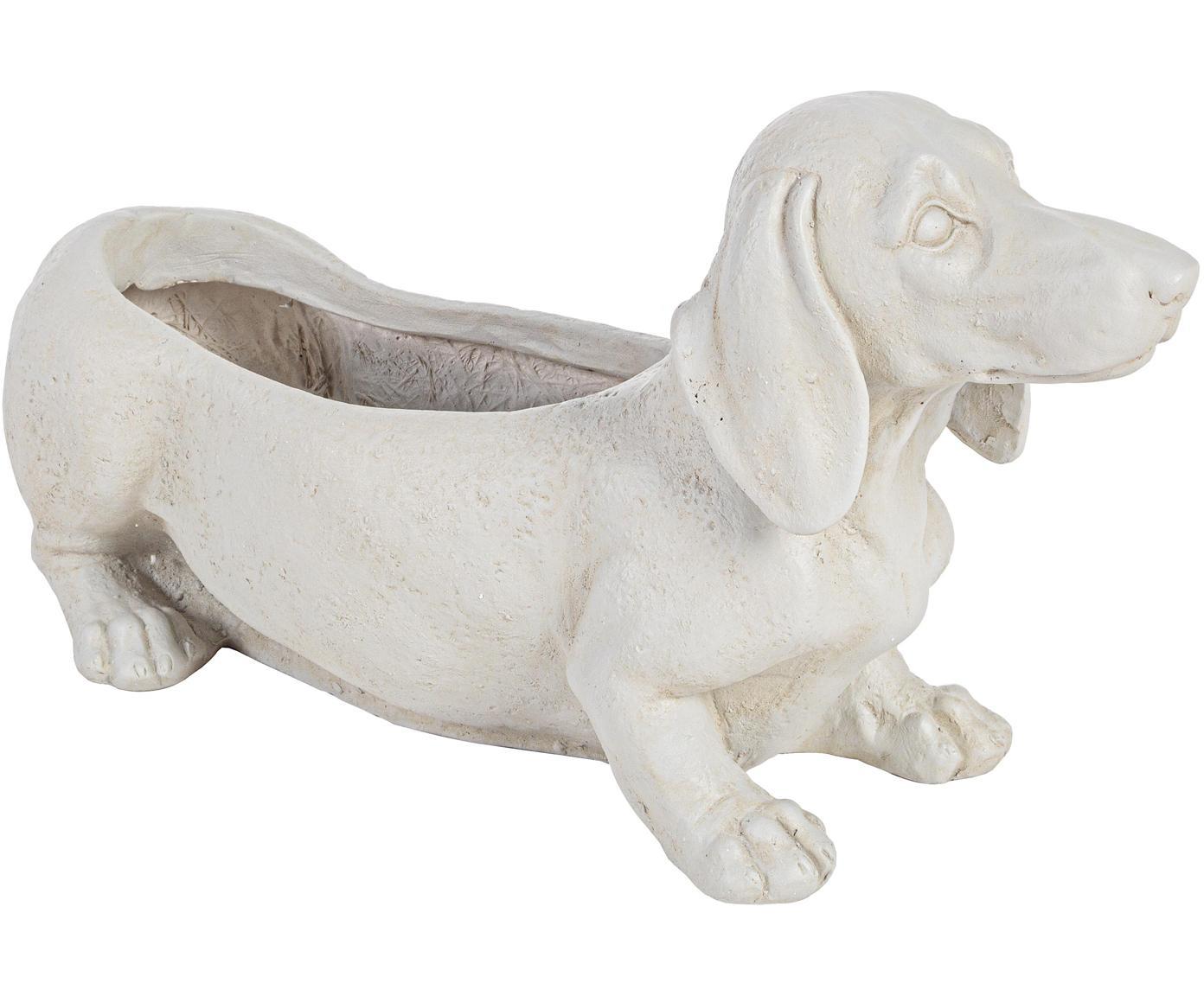 Portavaso Dog, Cemento, rivestito, Bianco latteo, Larg. 50 x Alt. 27 cm