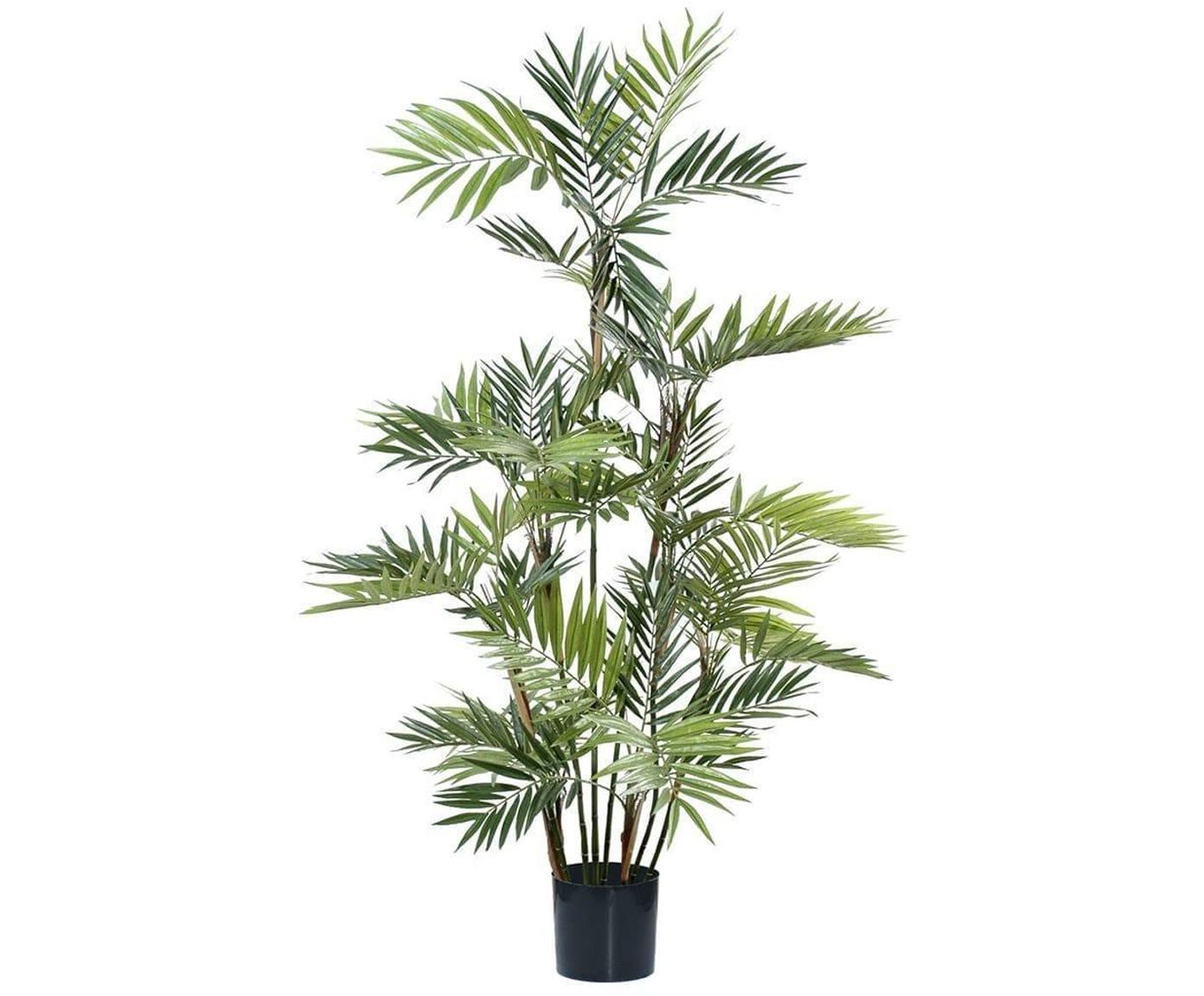 Planta artificial Palm Parlour, Fibra sintética, Verde, Ø 45 x Al 180 cm