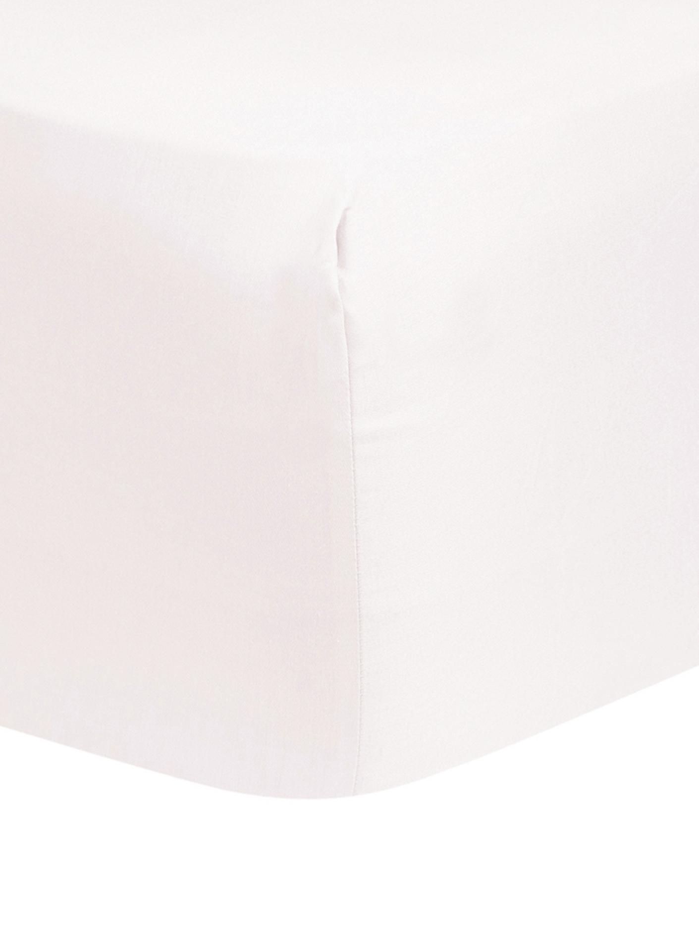 Katoensatijnen hoeslaken Comfort, Weeftechniek: satijn, licht glanzend, Roze, 90 x 200 cm