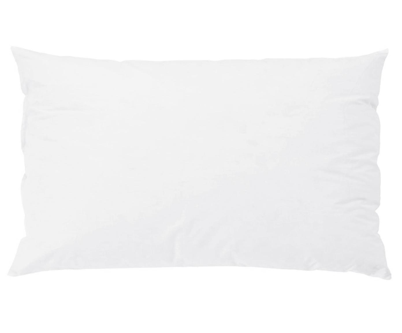 Imbottitura per cuscini Premium, 30 x 50, Bianco, Larg. 30 x Lung. 50 cm