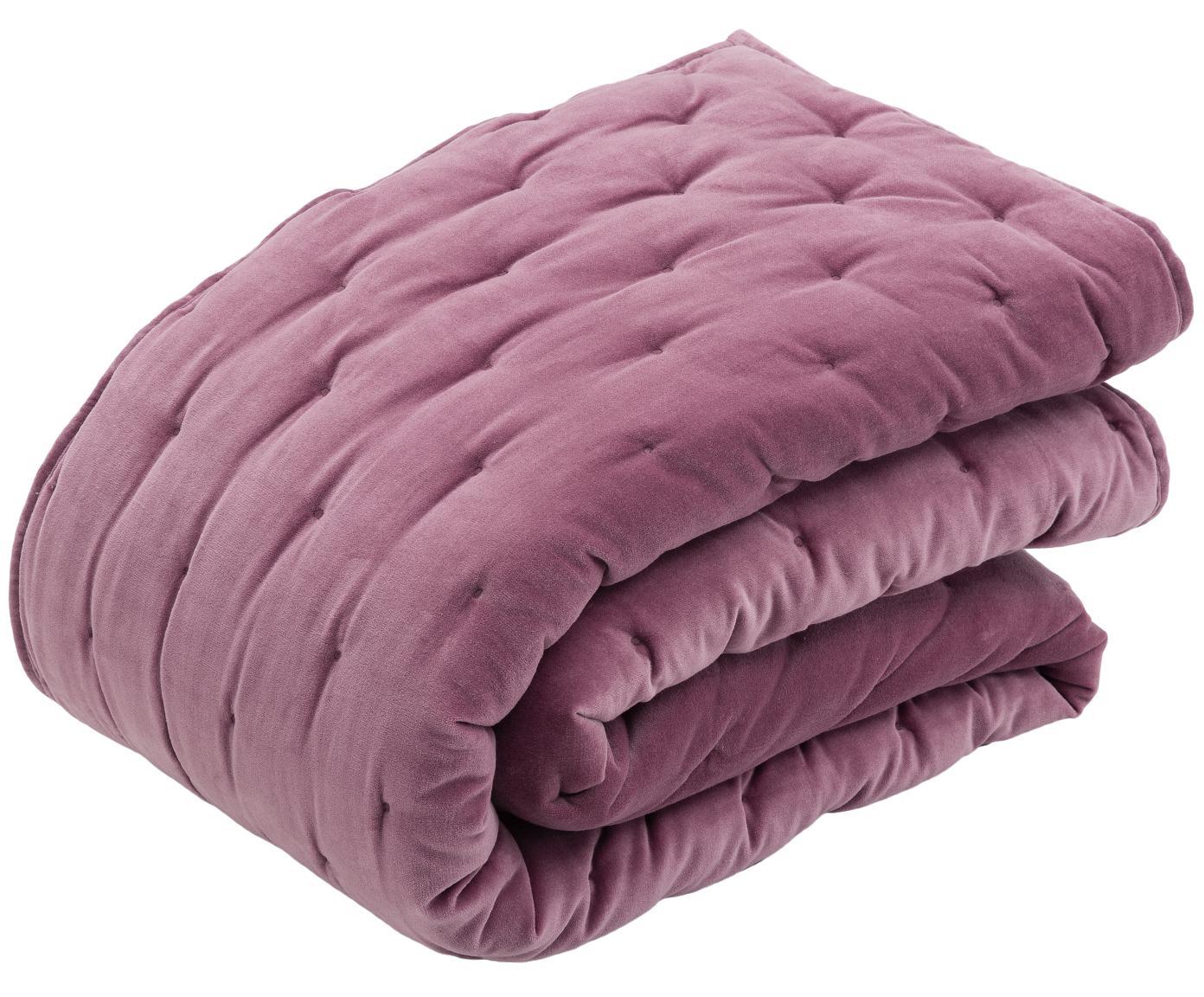 Colcha de terciopelo acolchada Cheryl, Parte delantera: terciopelo de algodón, Parte trasera: algodón, Malva, An 160 x L 220 cm