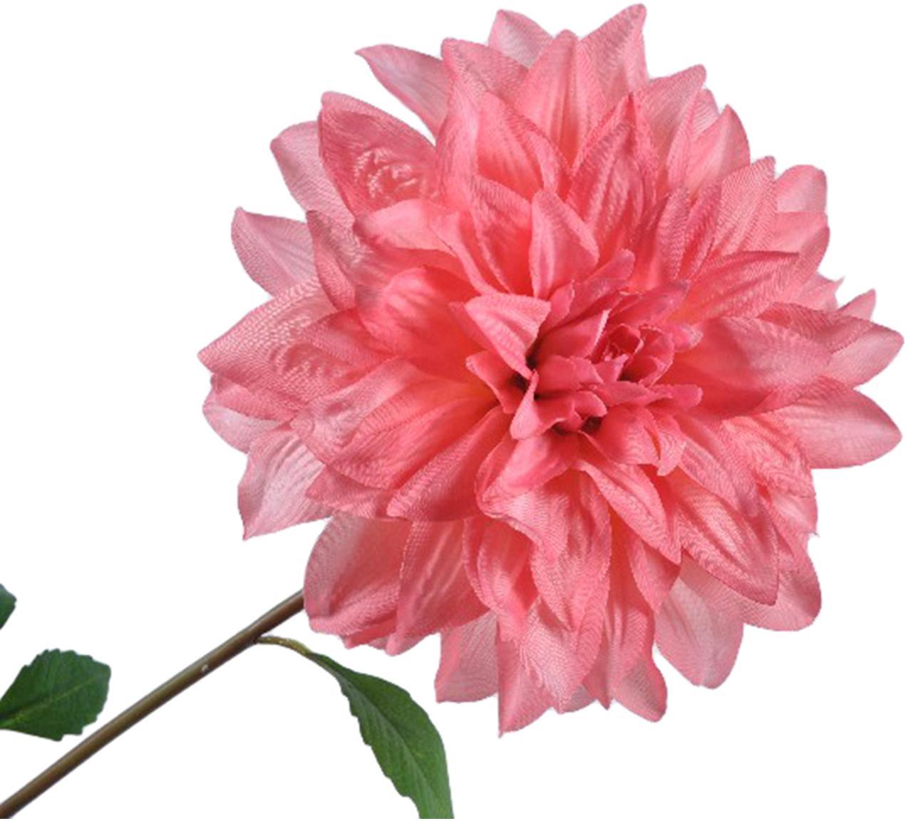 Fiore artificiale dalia Rosalina, Poliestere, PCV, metallo, Rosa, verde, Lung. 69 cm