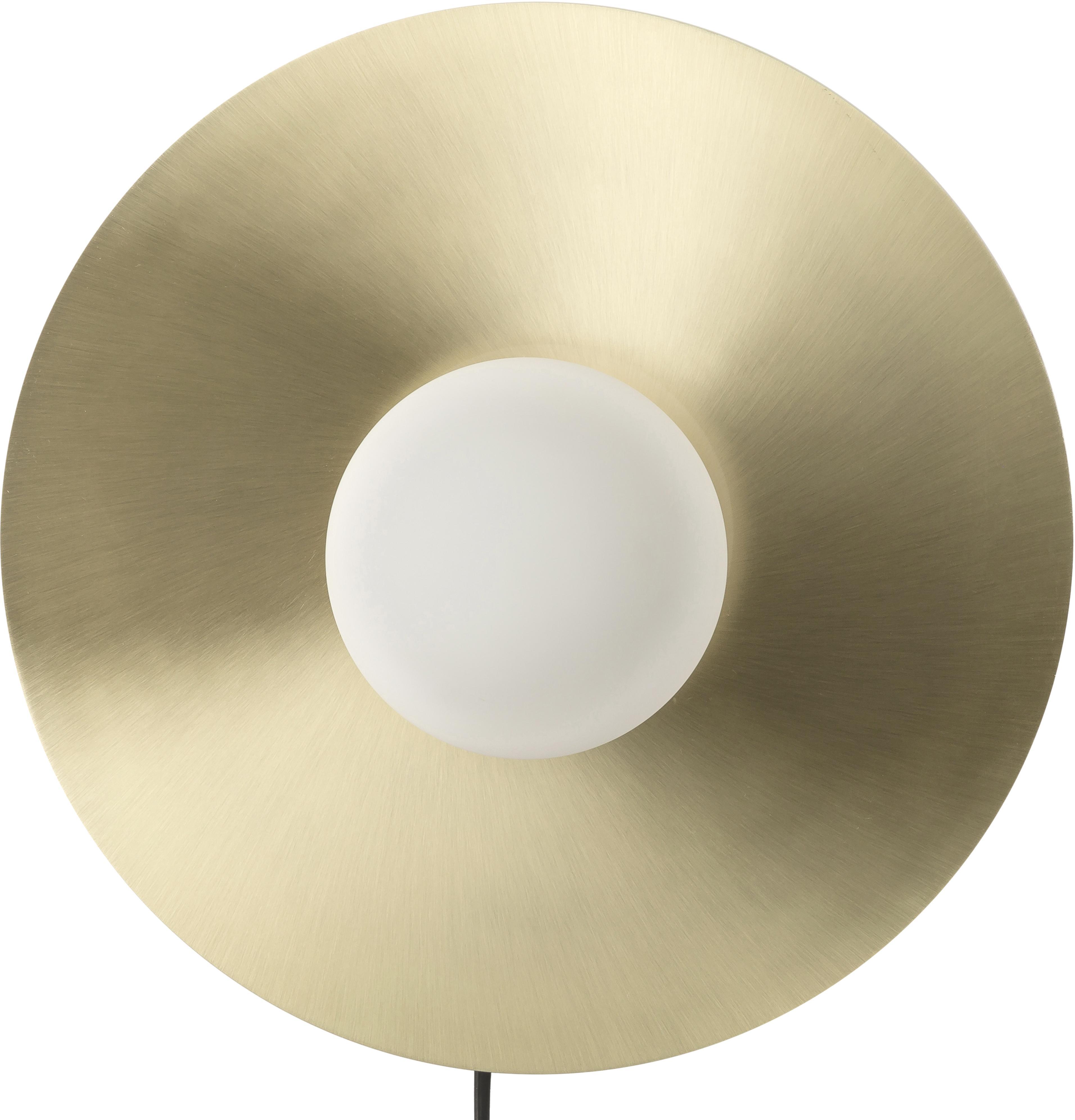 Applique LED en laiton Starling, Rosace: couleur laiton, matAbat-jour: blanc