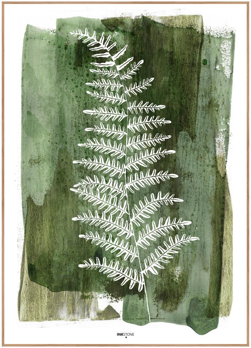 Impresión digital enmarcadaWhite Fern, Fotografía: impresión digital sobre p, Parte trasera: tablero de fibras de dens, Verde, blanco, An 30 x Al 40 cm