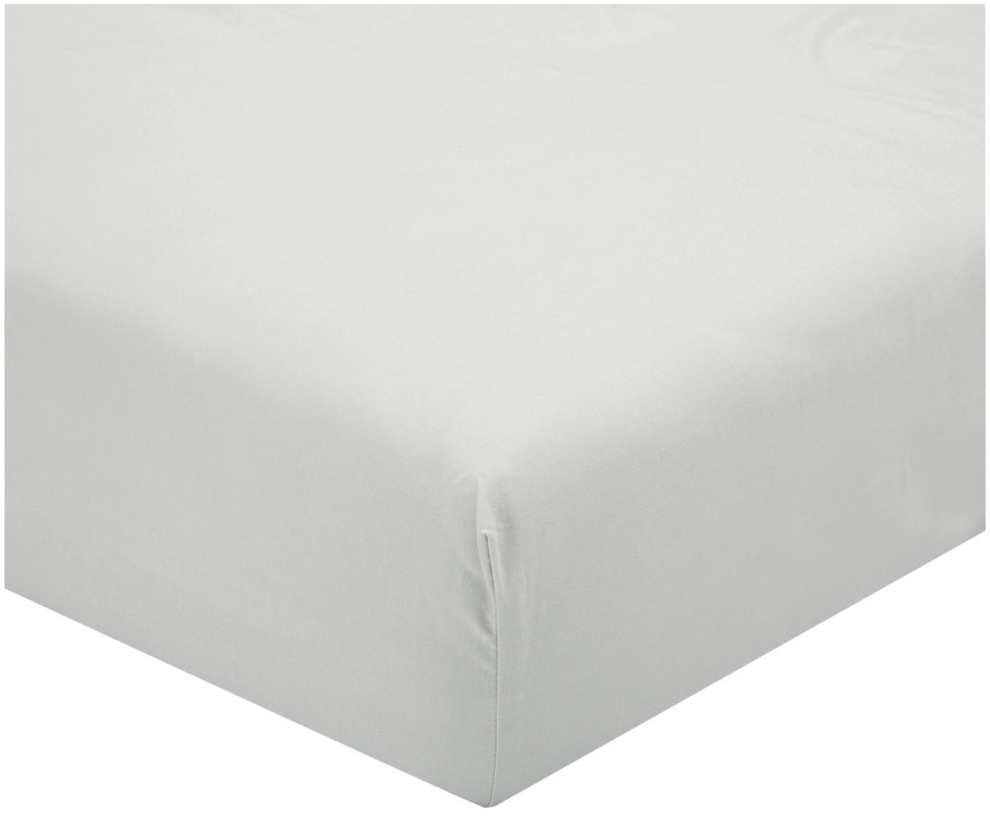 Lenzuolo con angoli in percalle Elsie, Tessuto: percalle, Grigio chiaro, 90 x 200 cm