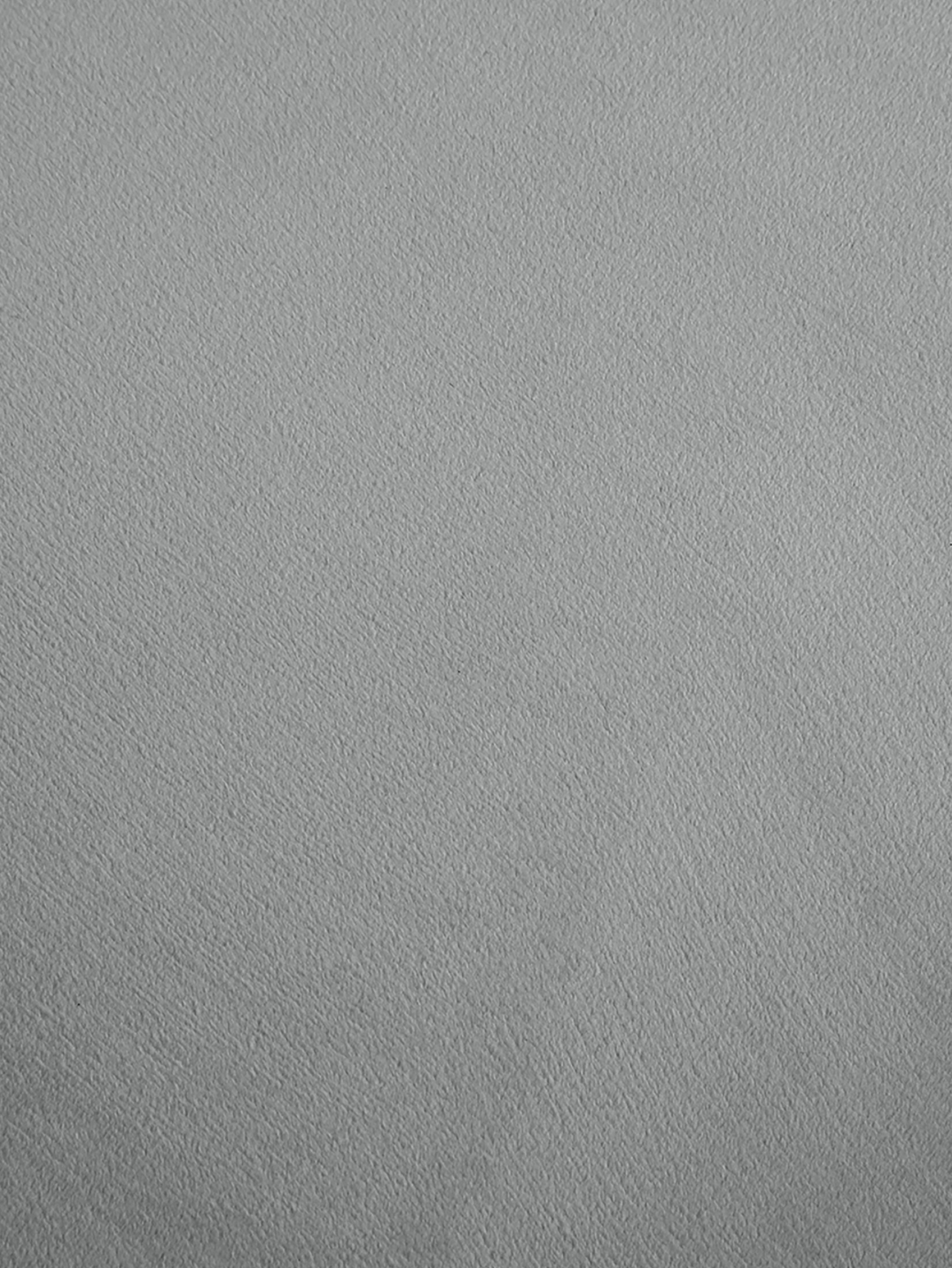 Poltrona in velluto Louise, Rivestimento: velluto (poliestere) 30.0, Piedini: metallo rivestito, Rivestimento: grigio chiaro Piedini: dorato lucido spazzolato, Larg. 76 x Prof. 75 cm