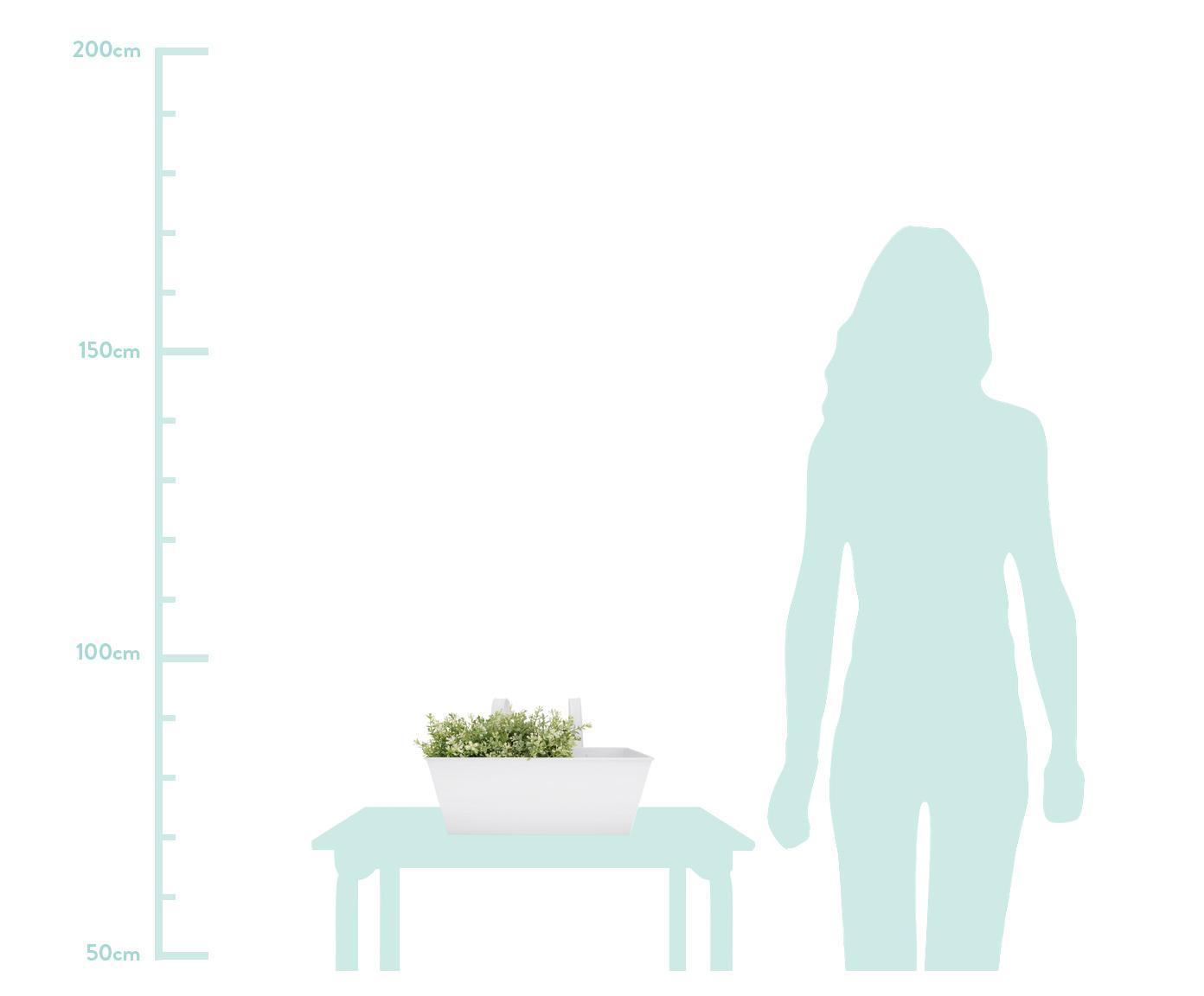 Portavasi da balcone Larissa, Metallo rivestito, Bianco, Larg. 40 x Alt. 23 cm