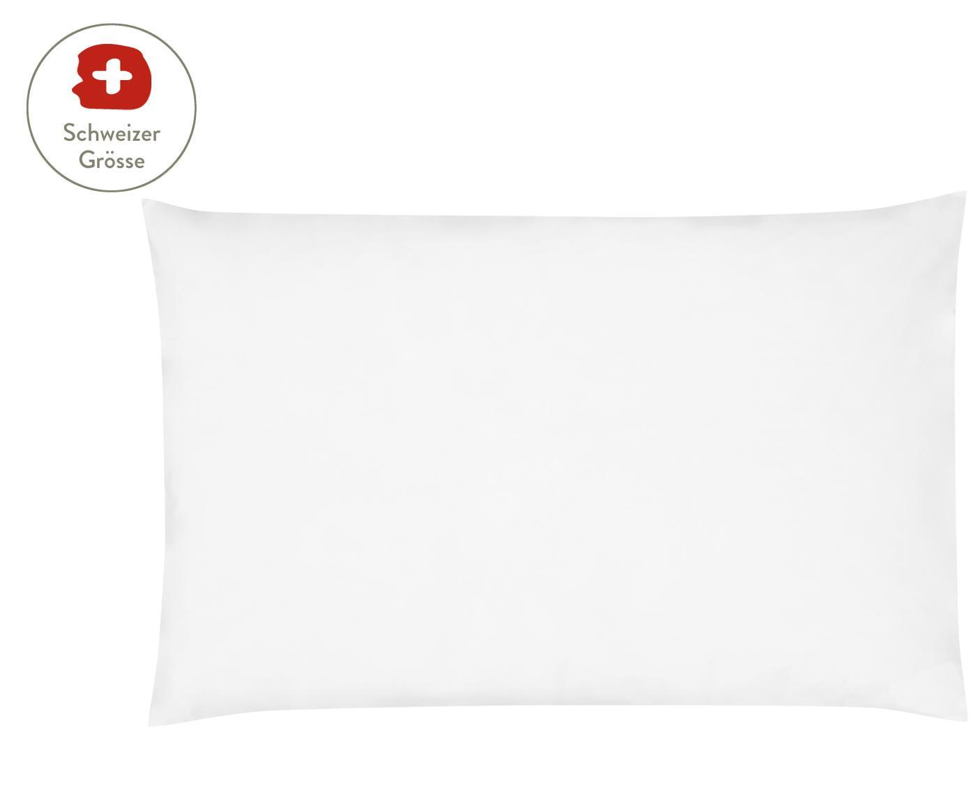 Baumwollperkal-Kissenbezug Elsie in Weiss, Webart: Perkal Fadendichte 200 TC, Weiss, 65 x 100 cm