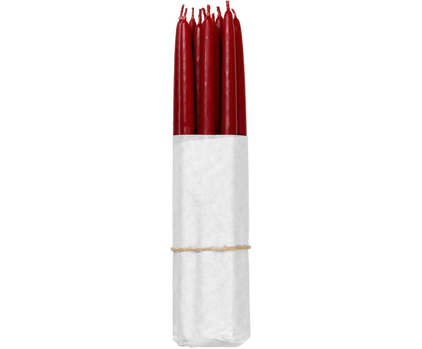Candela a bastone Loka 10 pz, Cera, Vino rosso, Ø 1 x Alt. 21 cm