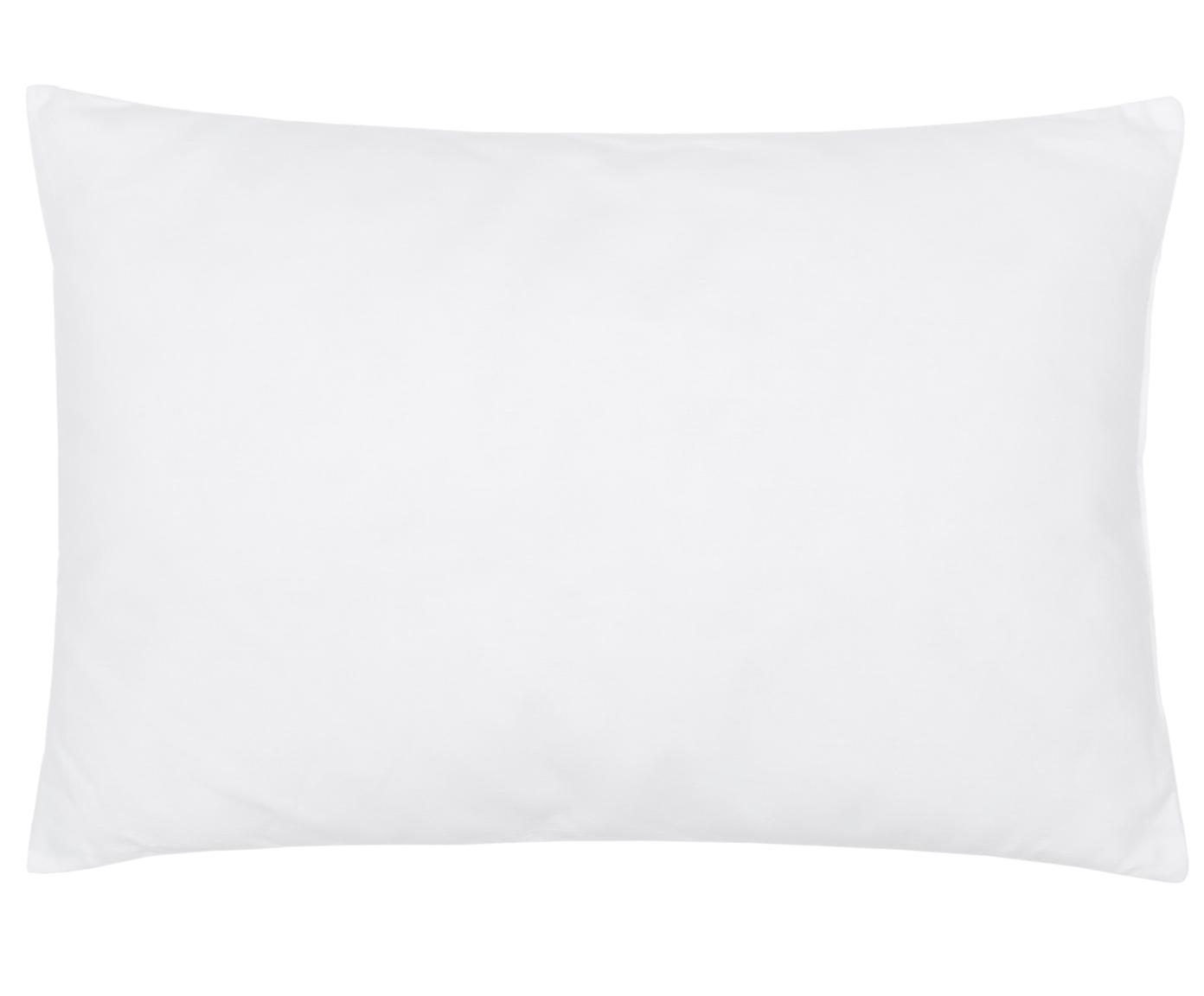 Relleno de cojín de microfibras Sia, 40x60, Funda: 100%algodón, Blanco, An 40 x L 60 cm
