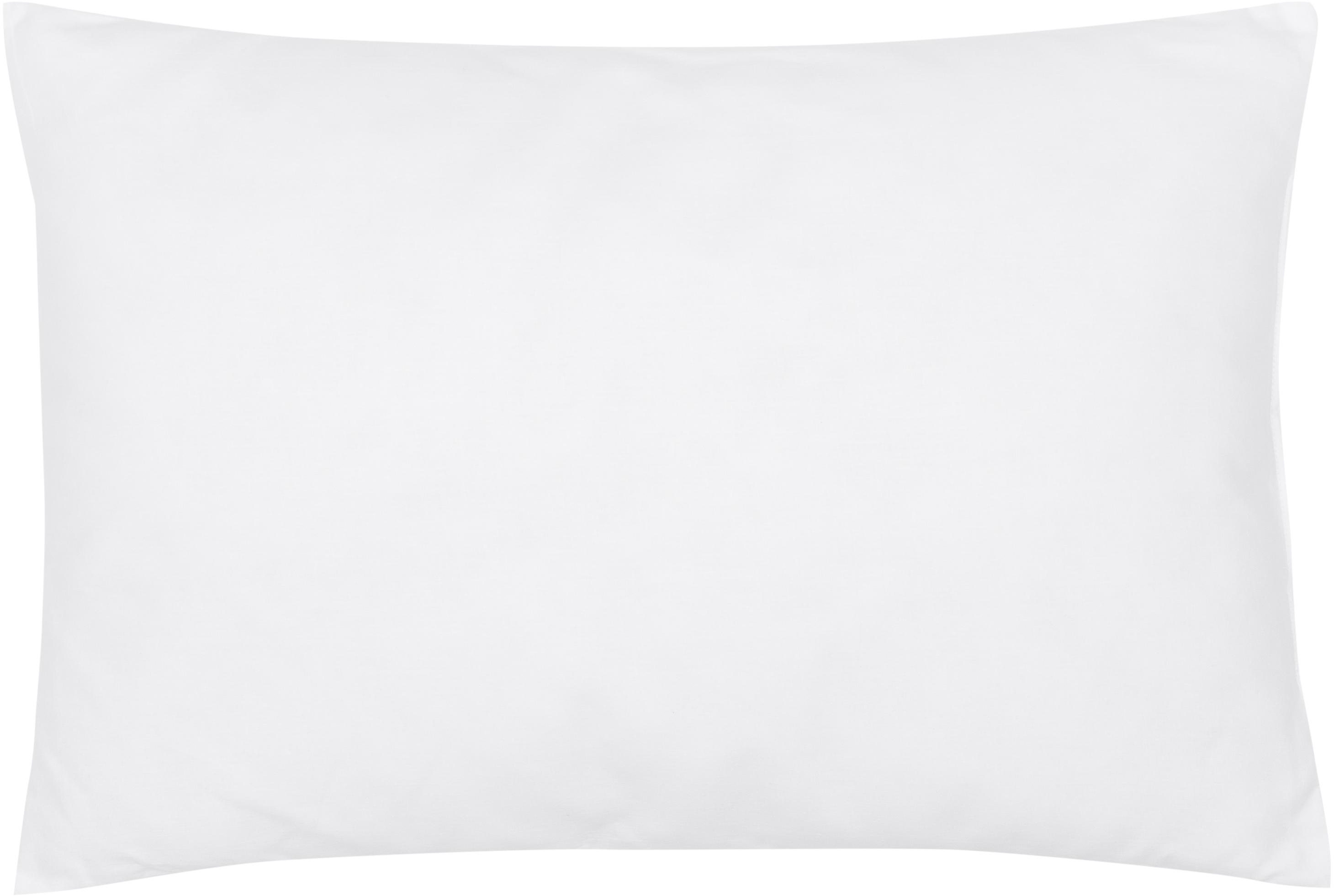 Kissen-Inlett Sia, 40x60, Microfaser-Füllung, Hülle: 100% Baumwolle, Weiß, 40 x 60 cm