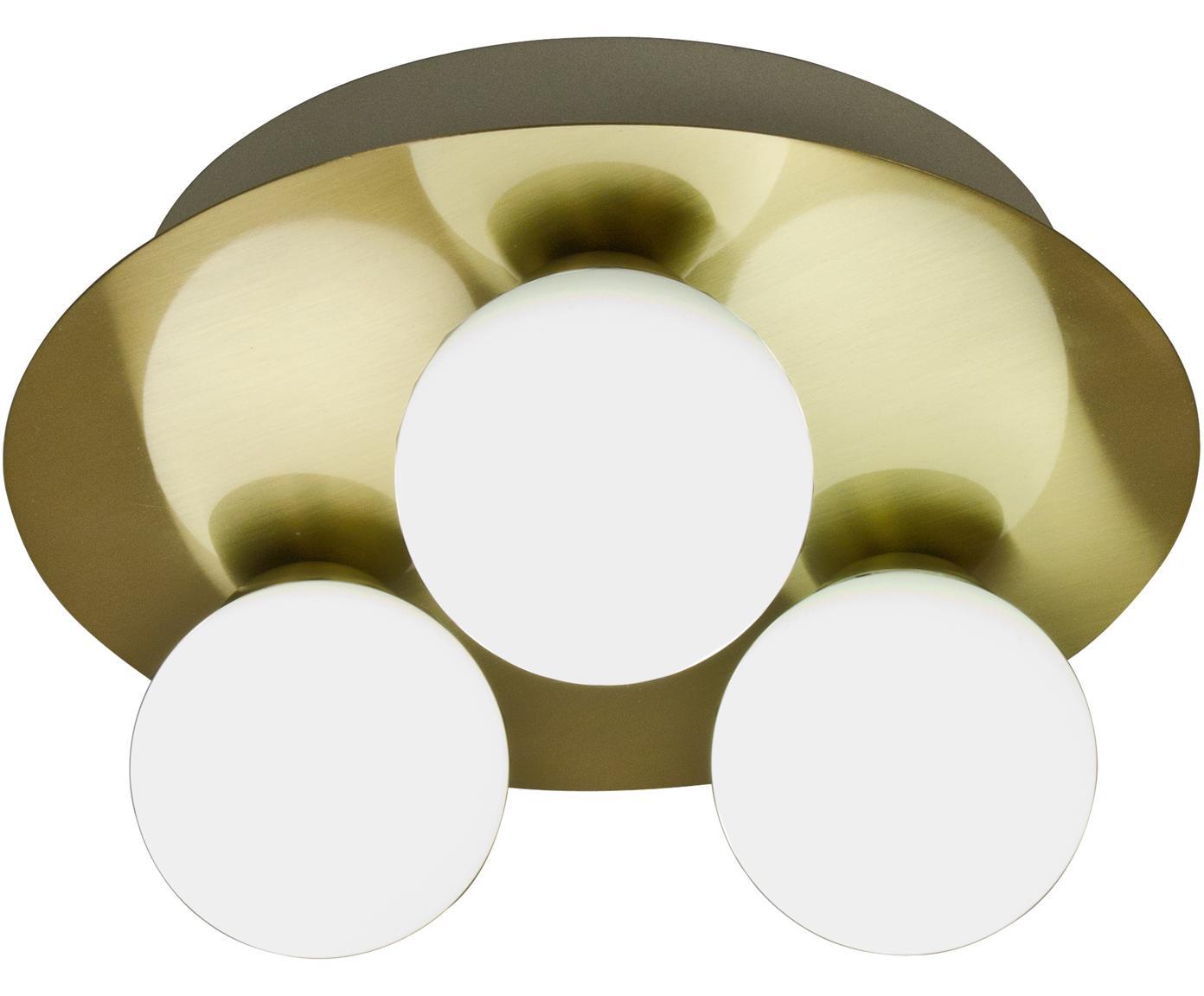 Applique a LED Orfeus, Paralume: vetro opale, Ottone, bianco opalino, Ø 25 x Alt. 13 cm