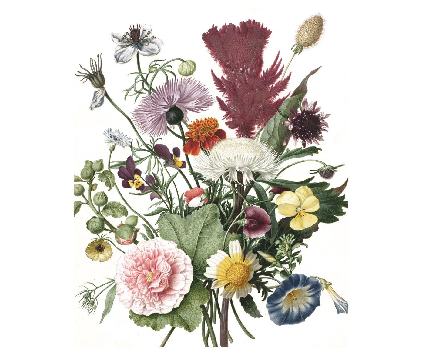 Adesivo murale Wild Flowers, Vello opaco, ecologica e biodegradabile, Multicolore, Larg. 142 x Alt. 180 cm
