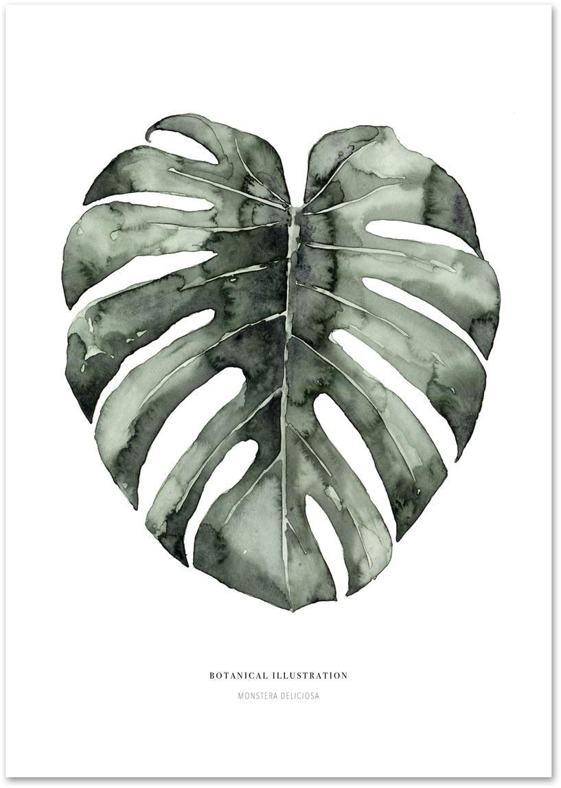Poster Urban Monstera, Digitaldruck auf Papier, 200 g/m², Weiss, Grün, 21 x 30 cm